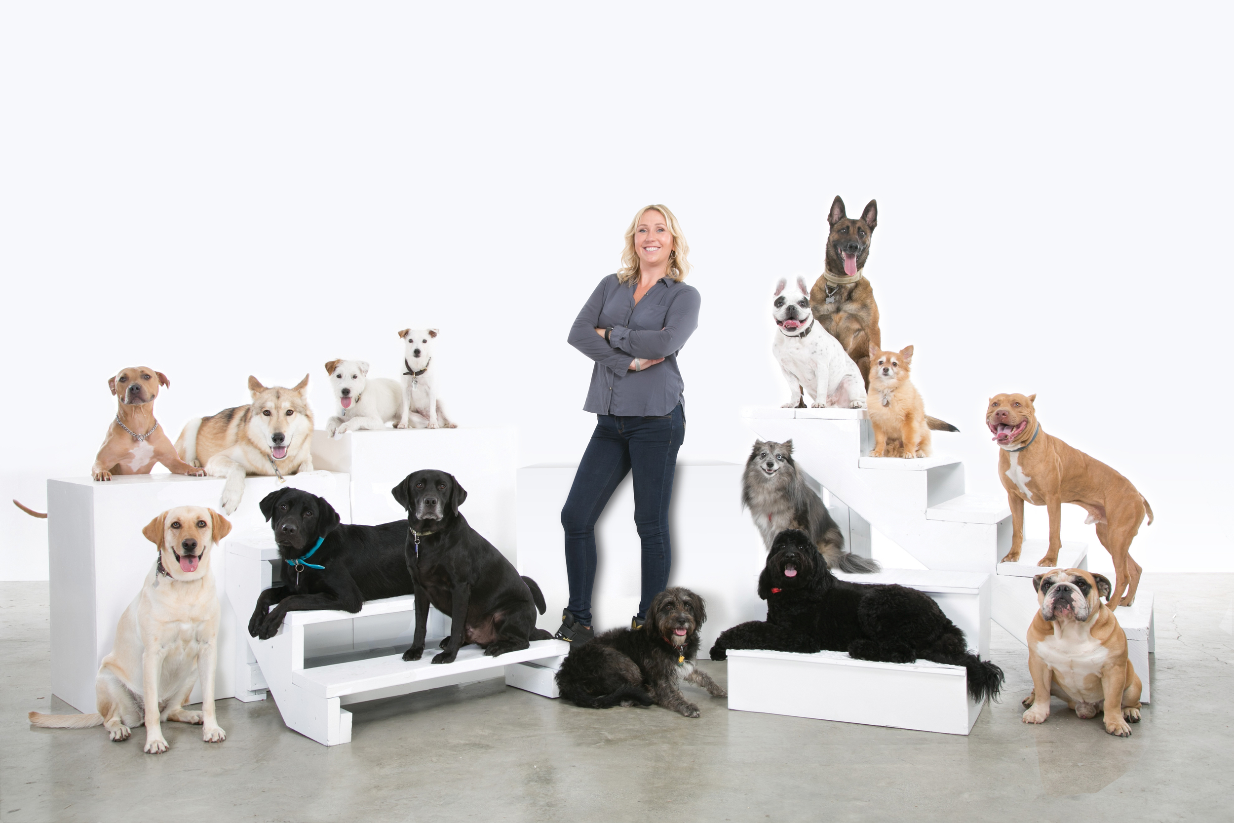 So many of my amazing clients' dogs! Without them, we would not be what we are today!