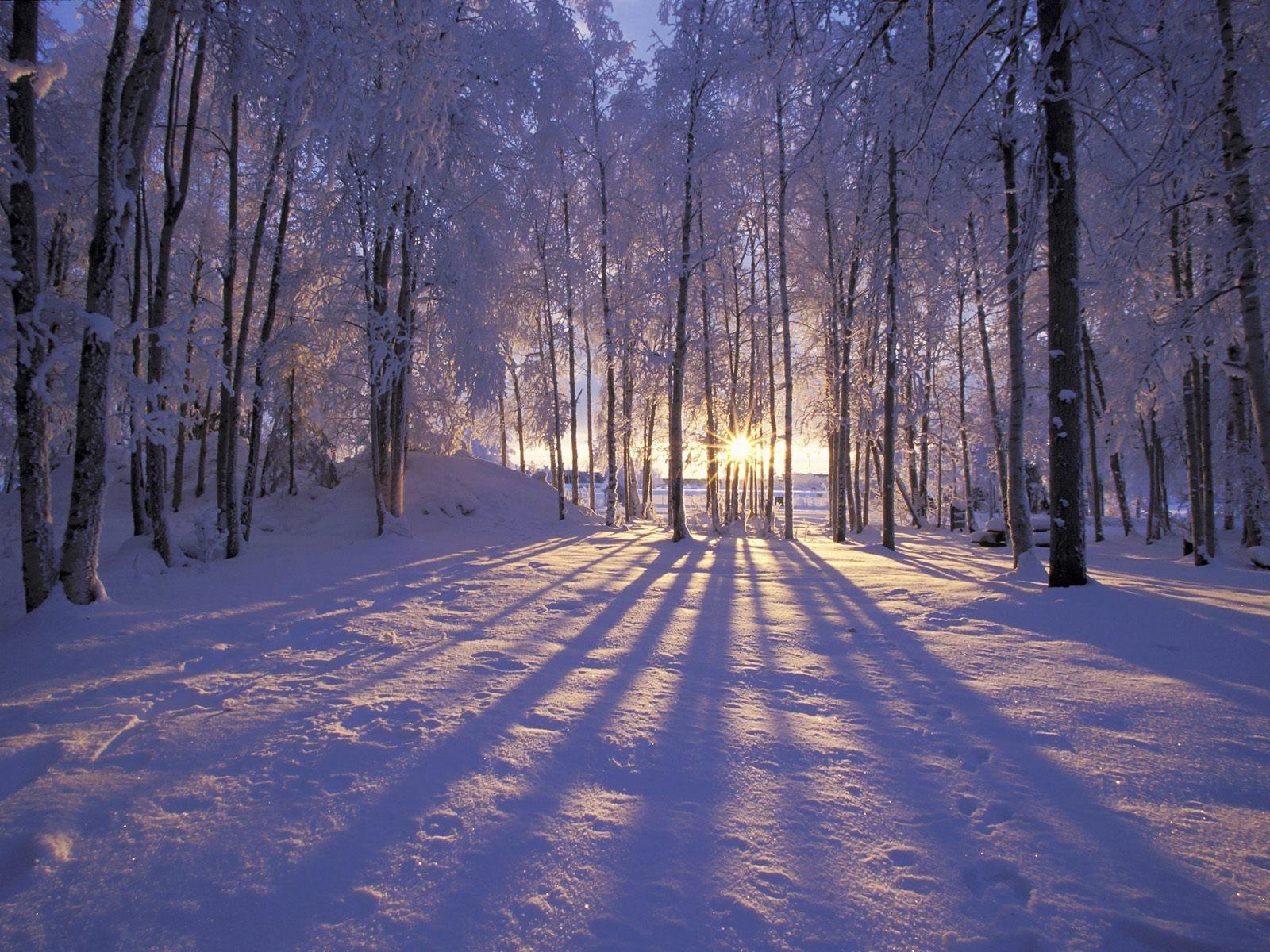 alaska-winter-wallpaper-wallpaper-1.jpg