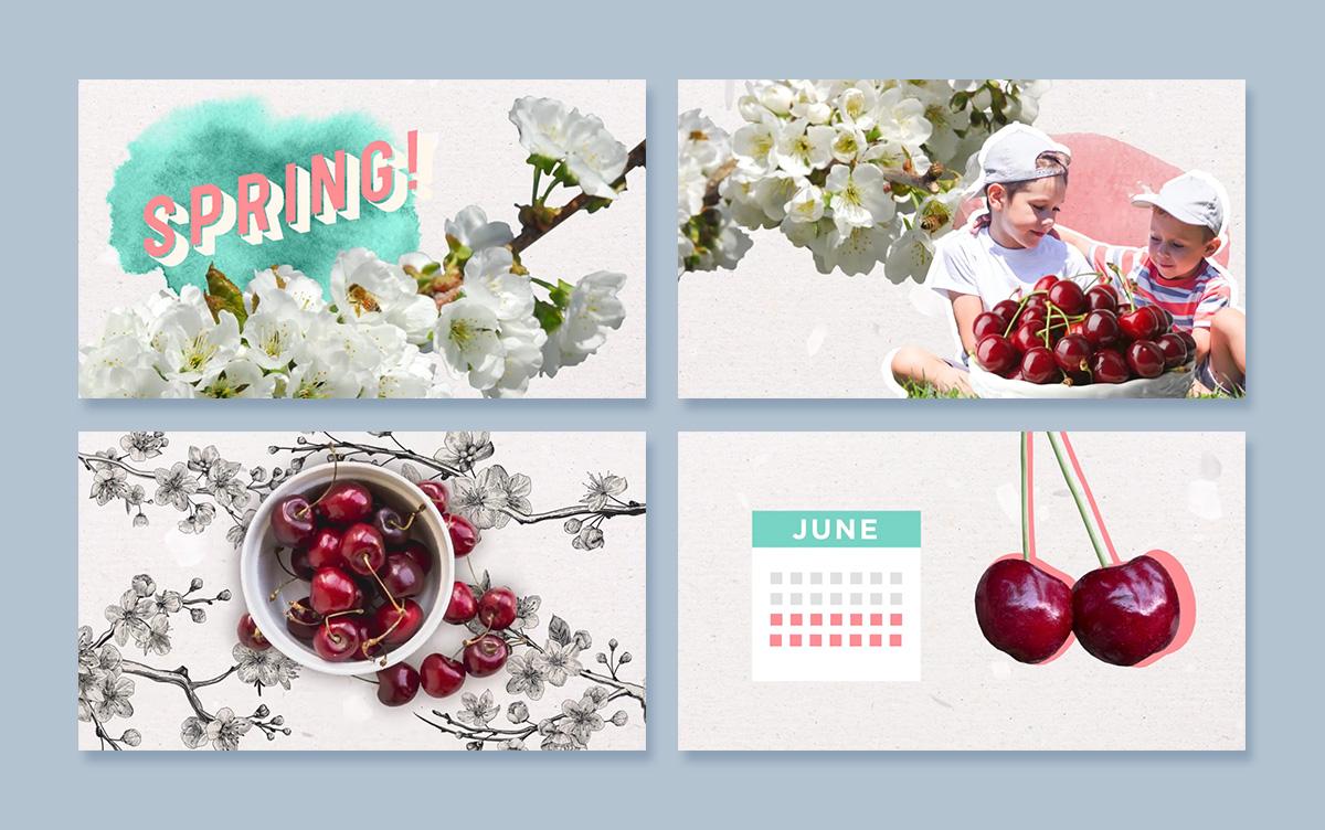 chelanfresh-cherriesWIS-screenshots-anuk.jpg