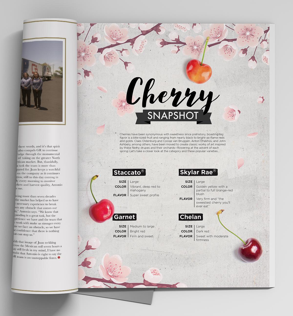 Snap_Cherry_FirstPage_01.jpg