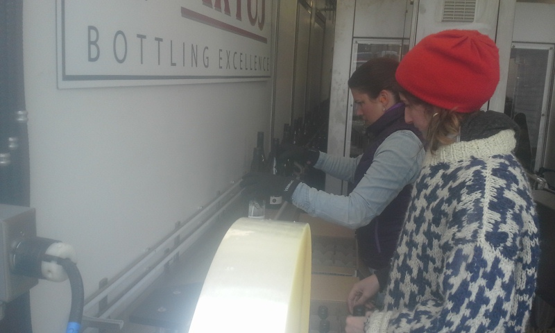 Special friend Vanessa and normal friend Nicole boxing wine in a tractor-trailer that arrived at 6am from The Future. Tyler considered contracting with one of this company's competitors before he noticed its slogan was Bottling Adequacy. Good decision, Tyler. Things went really smoothly.