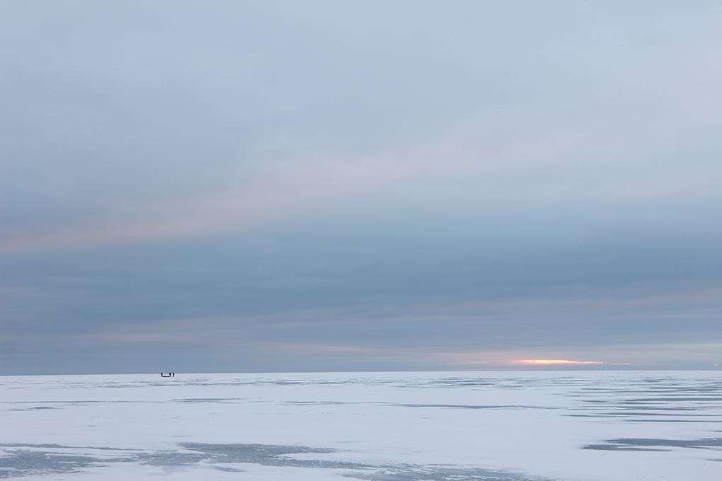 IceFish1.jpg