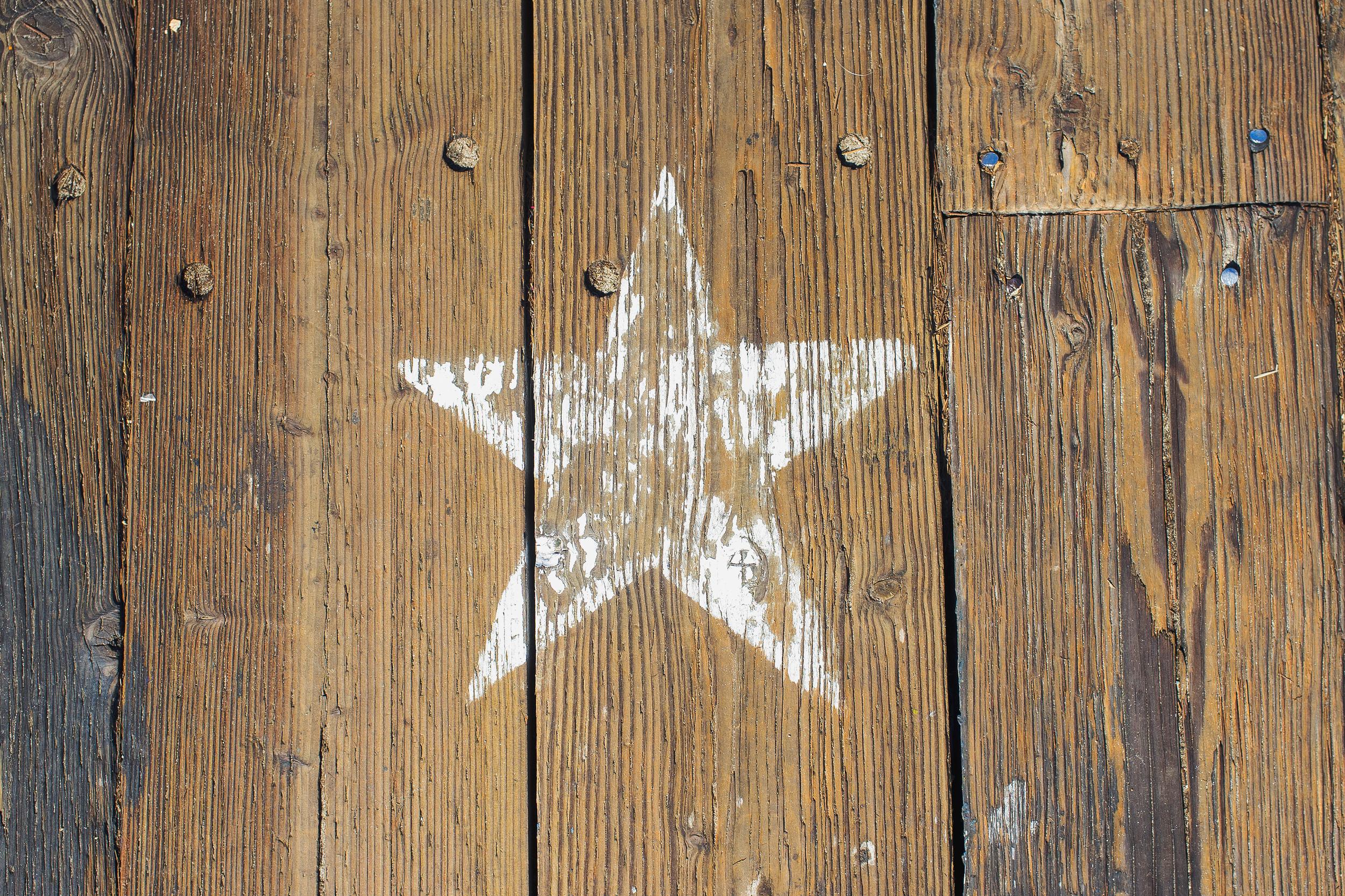 Venice Boardwalk Star.jpg