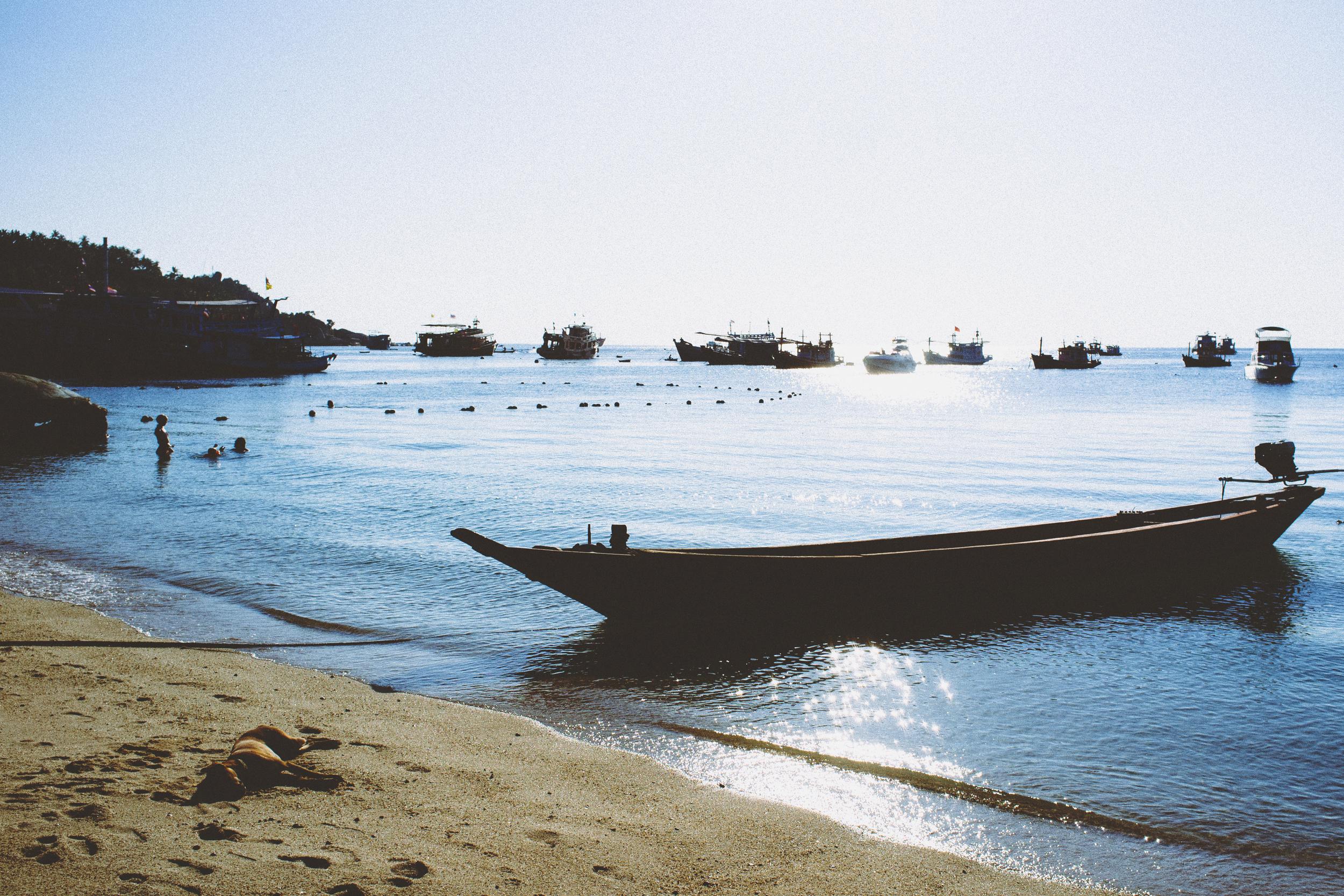 Koh Tao Beach.jpg