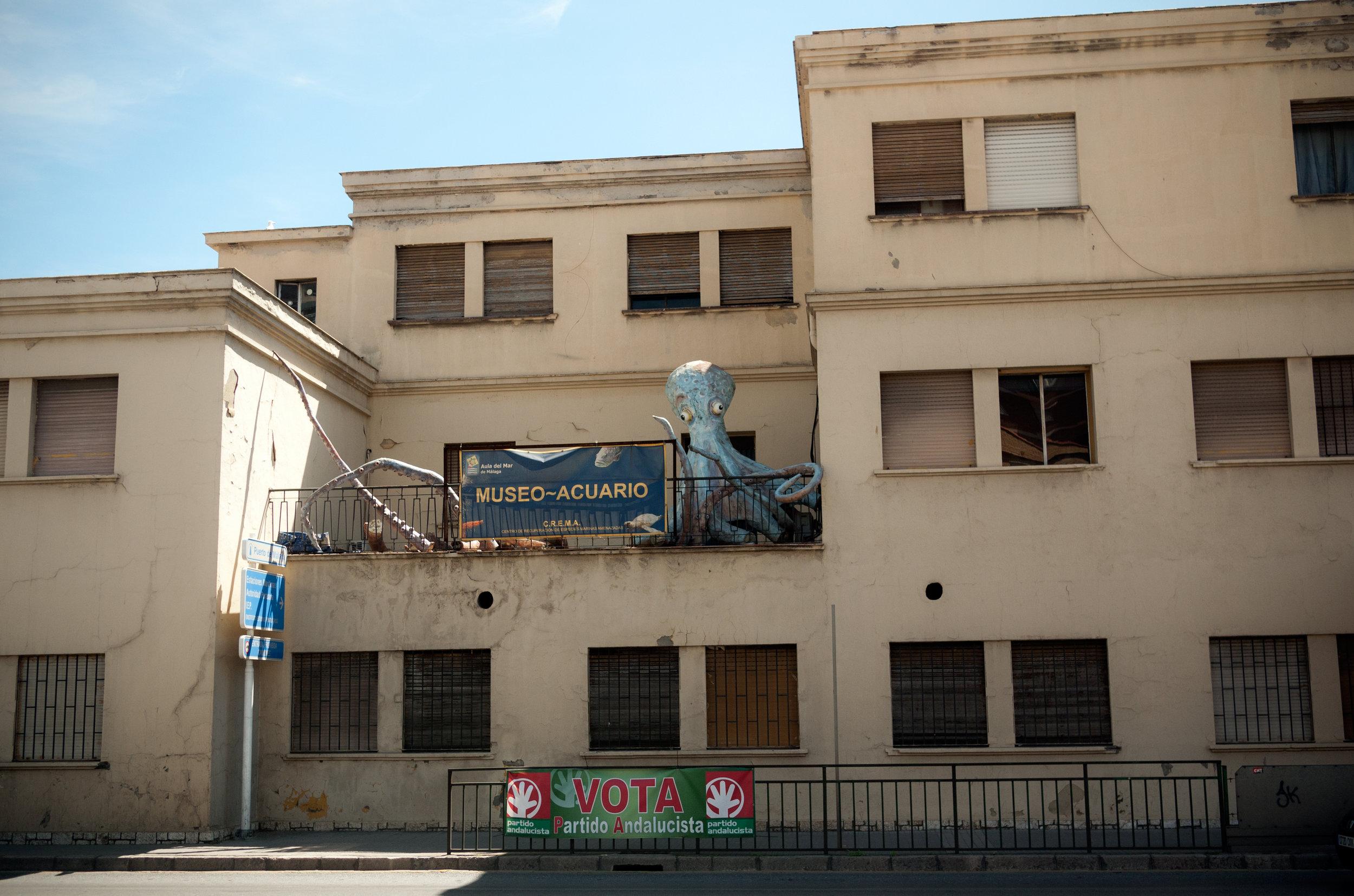 Museo Acuario.jpg