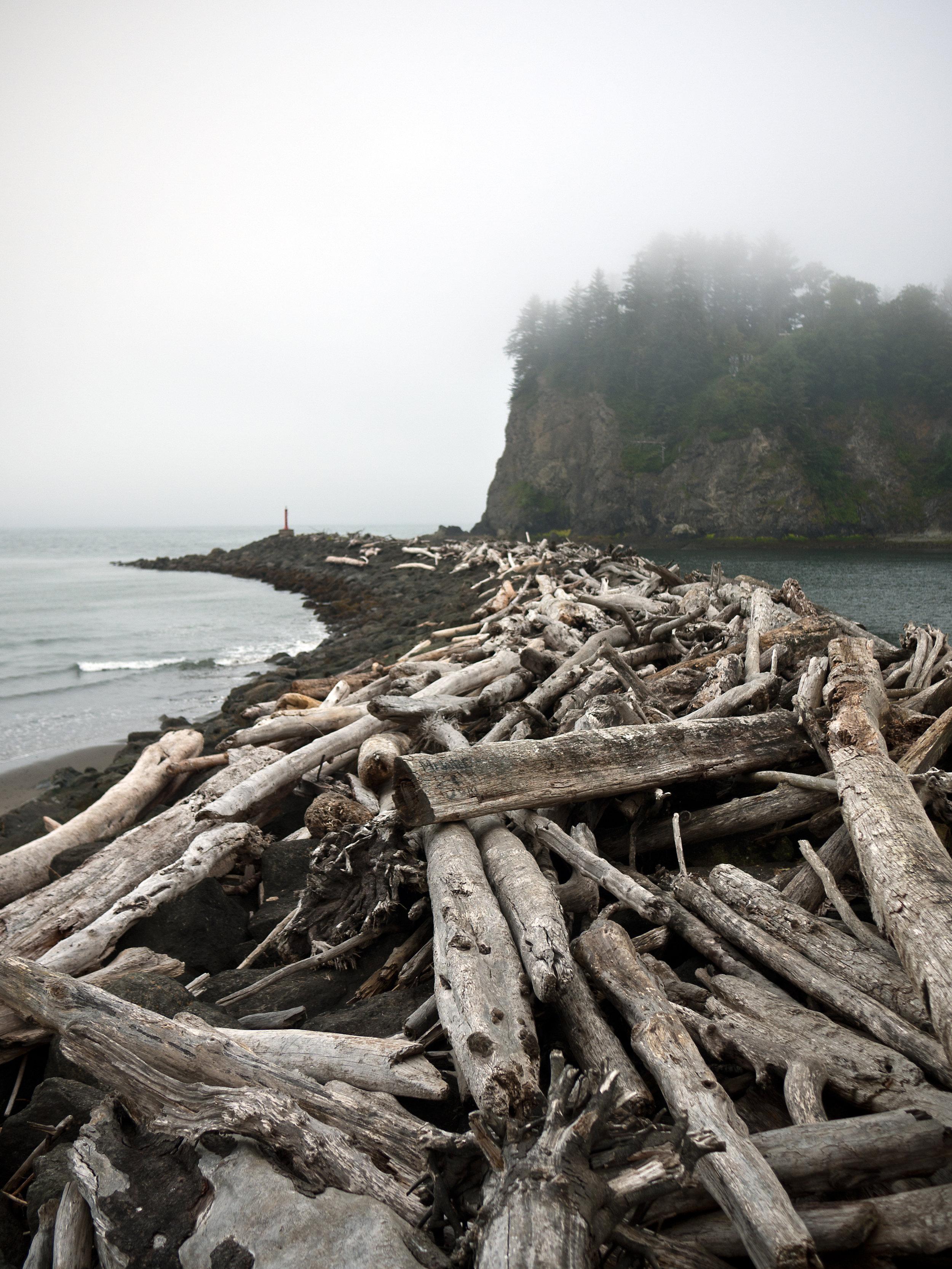 Log Beach.jpg