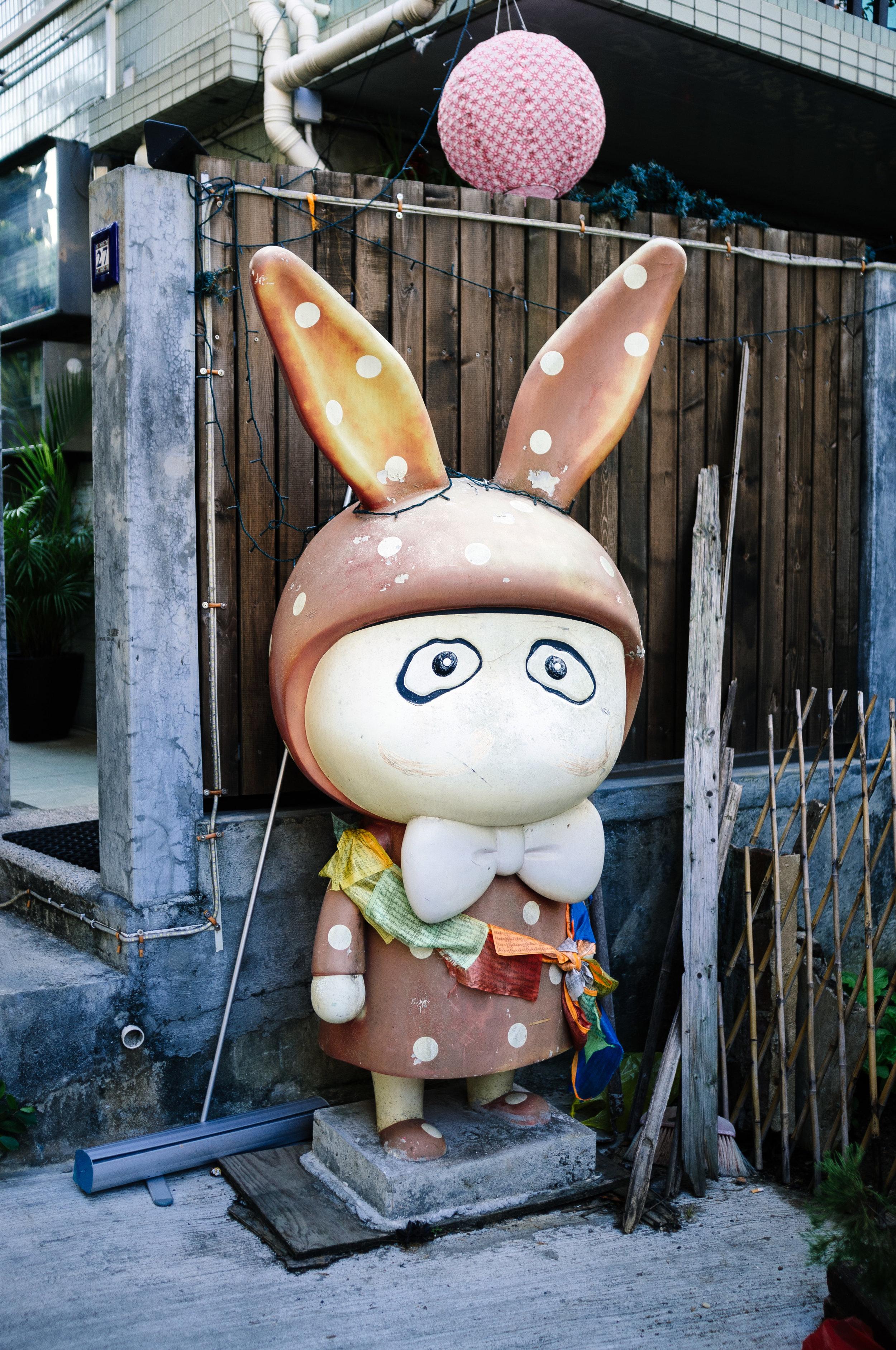Lamma Island Porch Rabbit.jpg