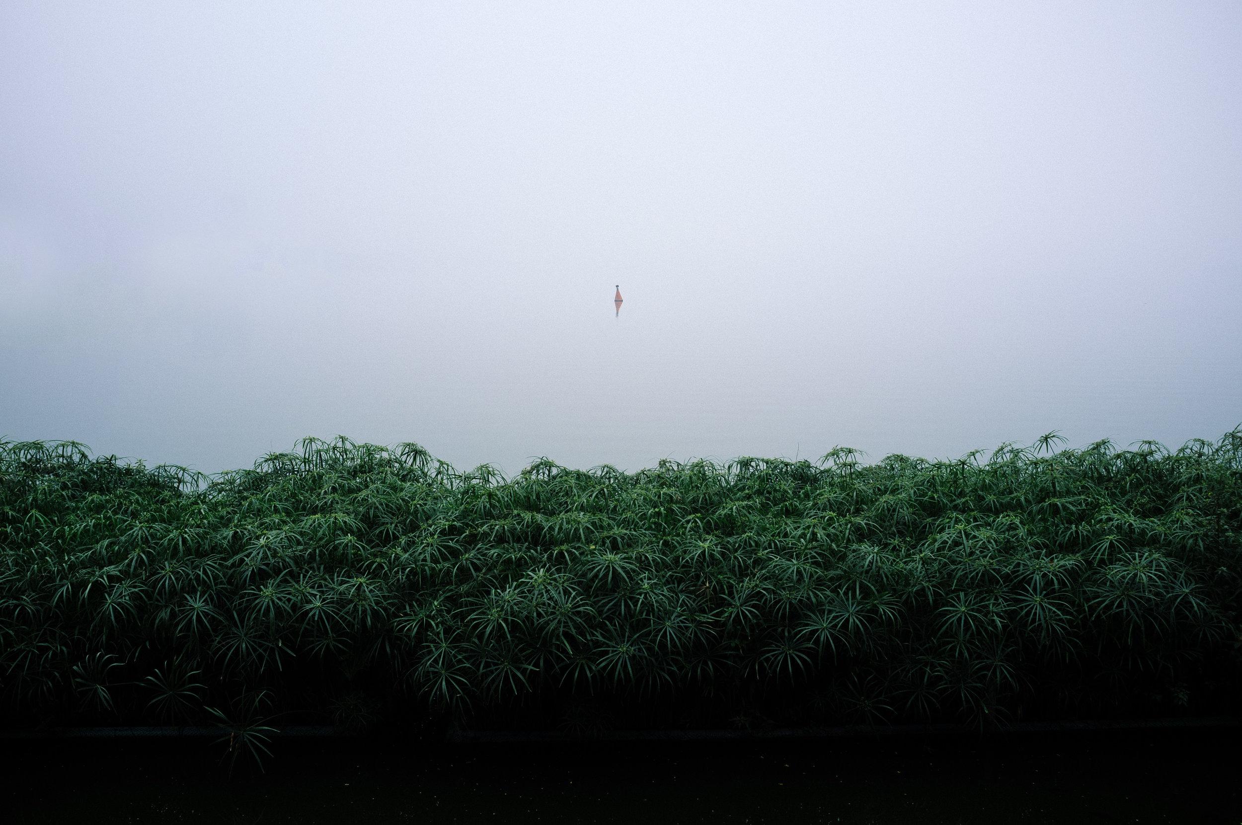 Hanoi Lake.jpg