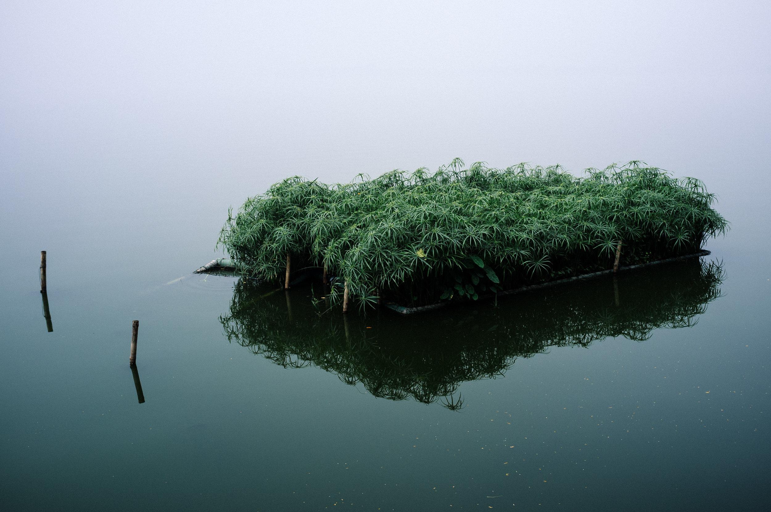 Hanoi Lake 2.jpg