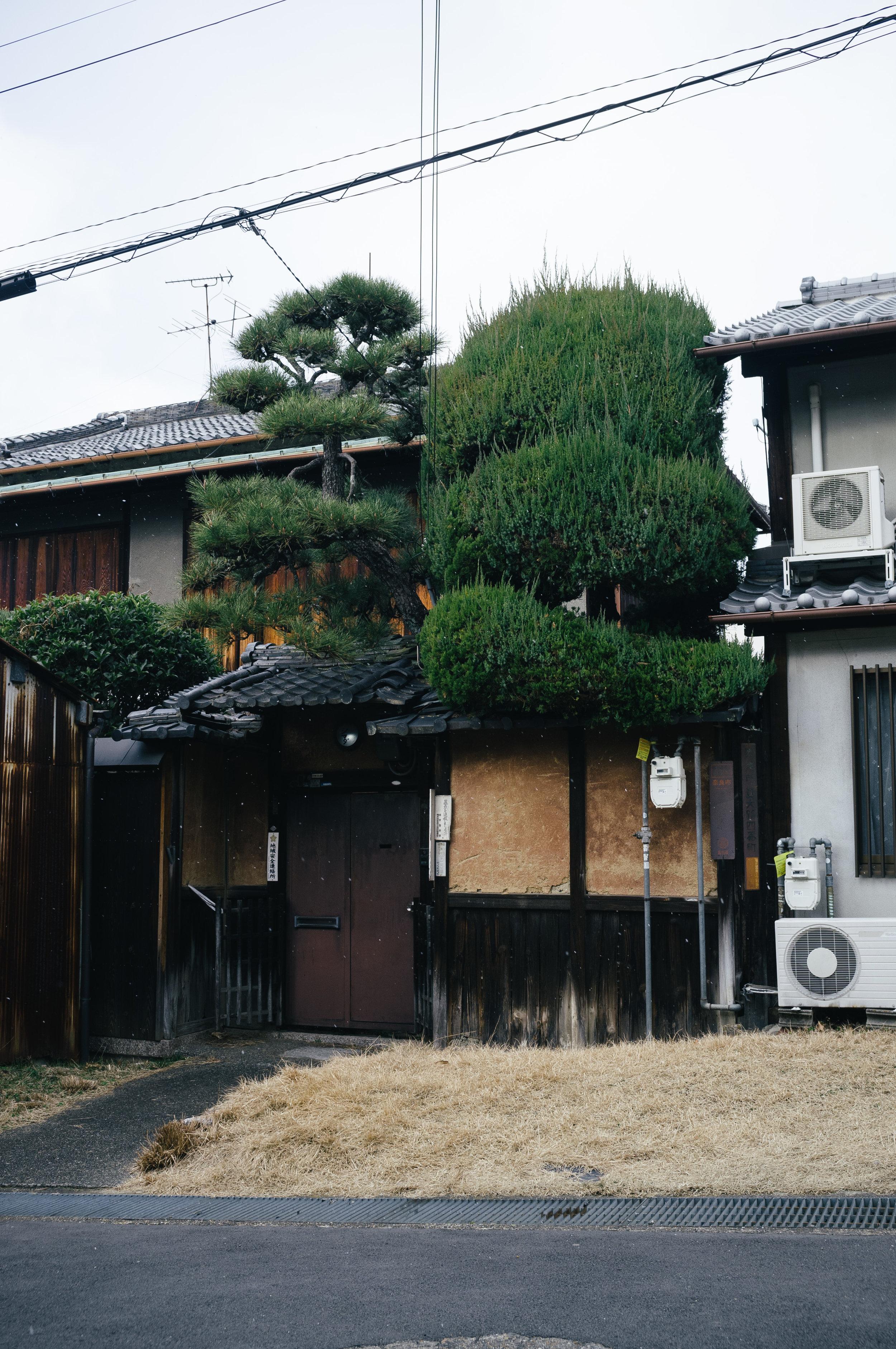 Nara House.jpg