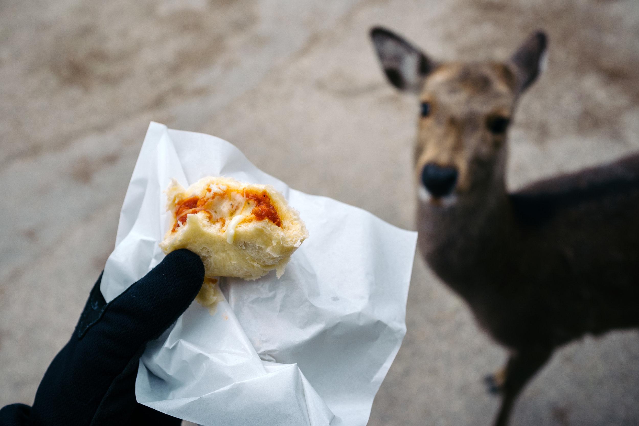 Nara Dough Deer.jpg