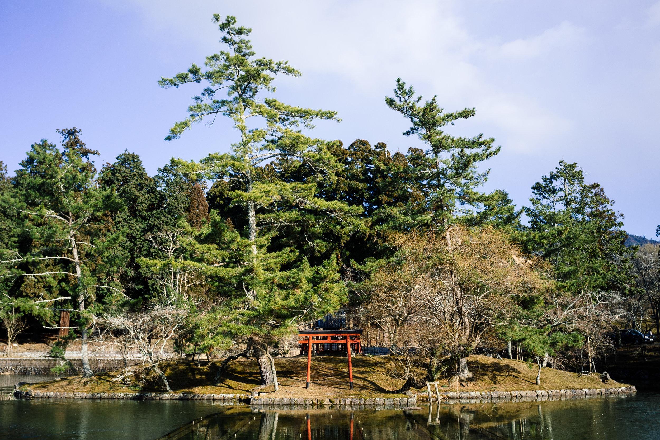 Nara Lake.jpg