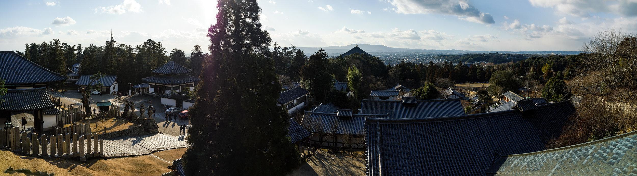Nara Pano.jpg