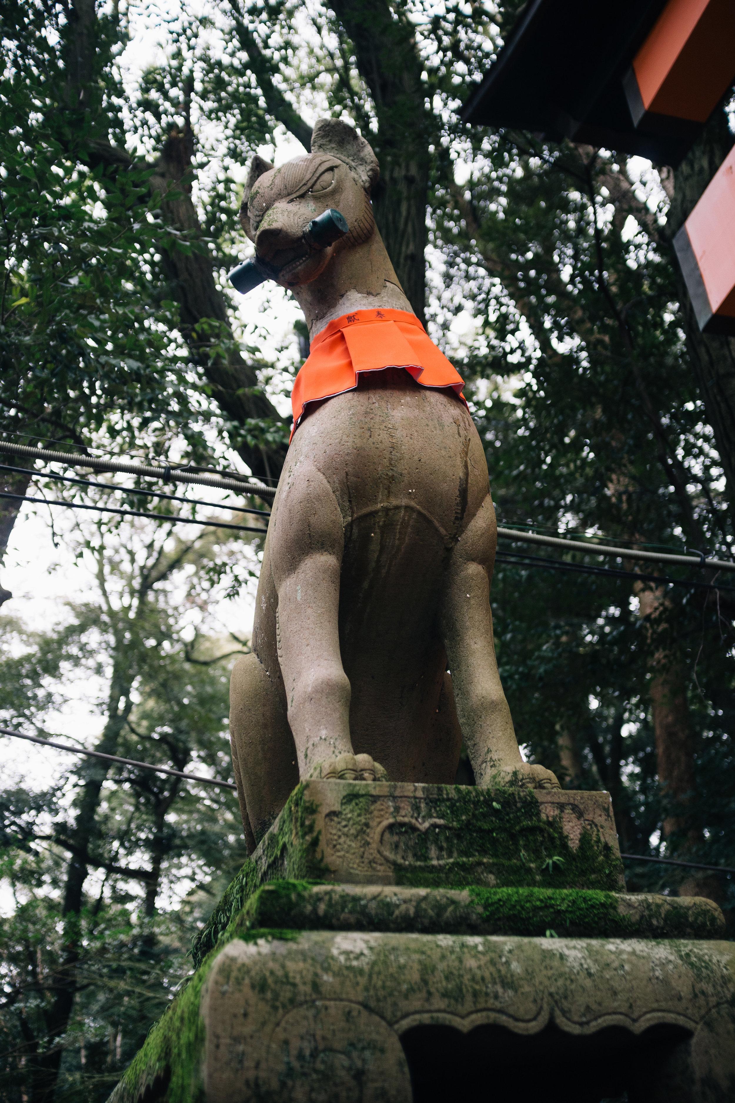 Inari 3.jpg