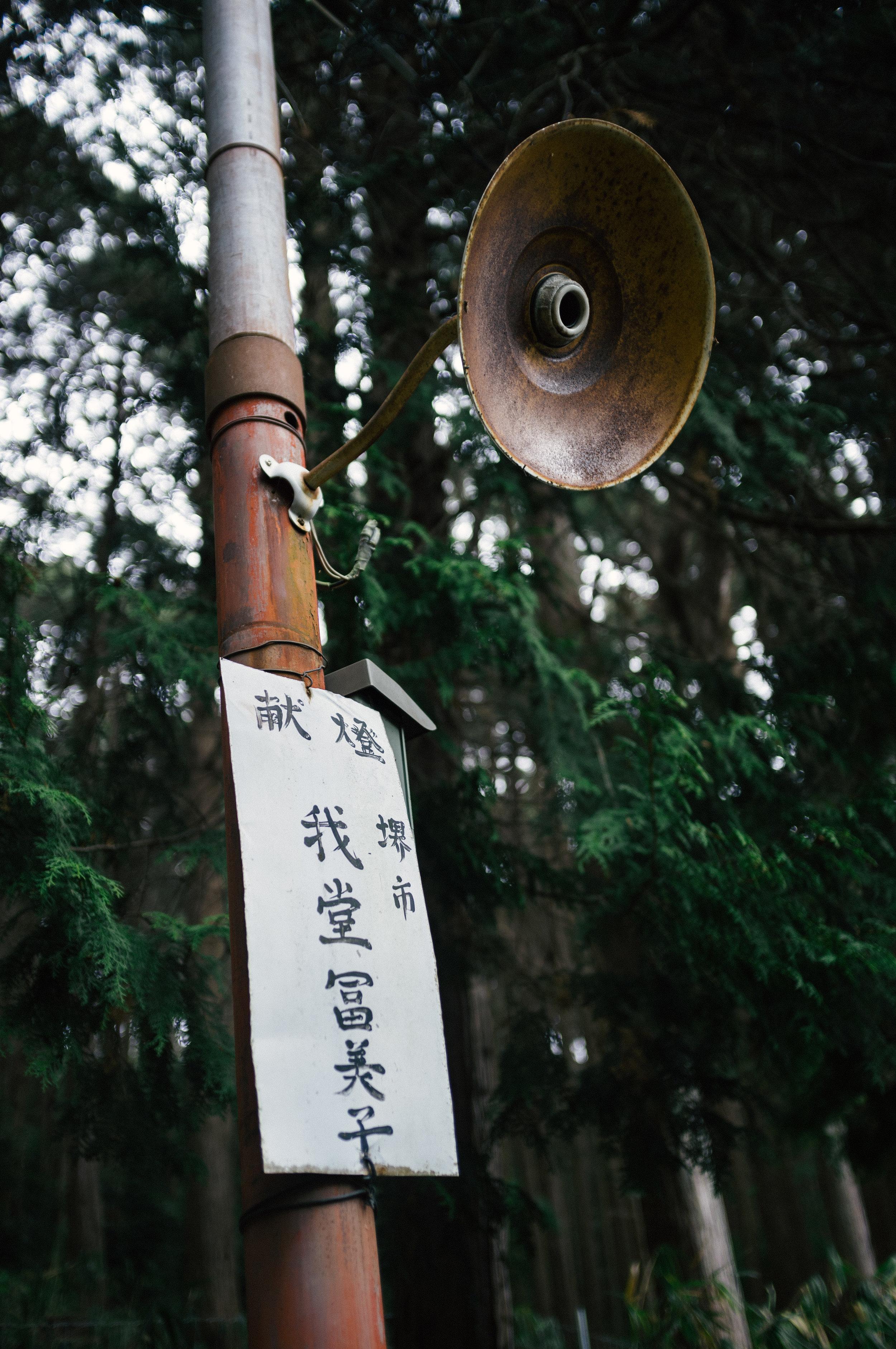Inari 7.jpg
