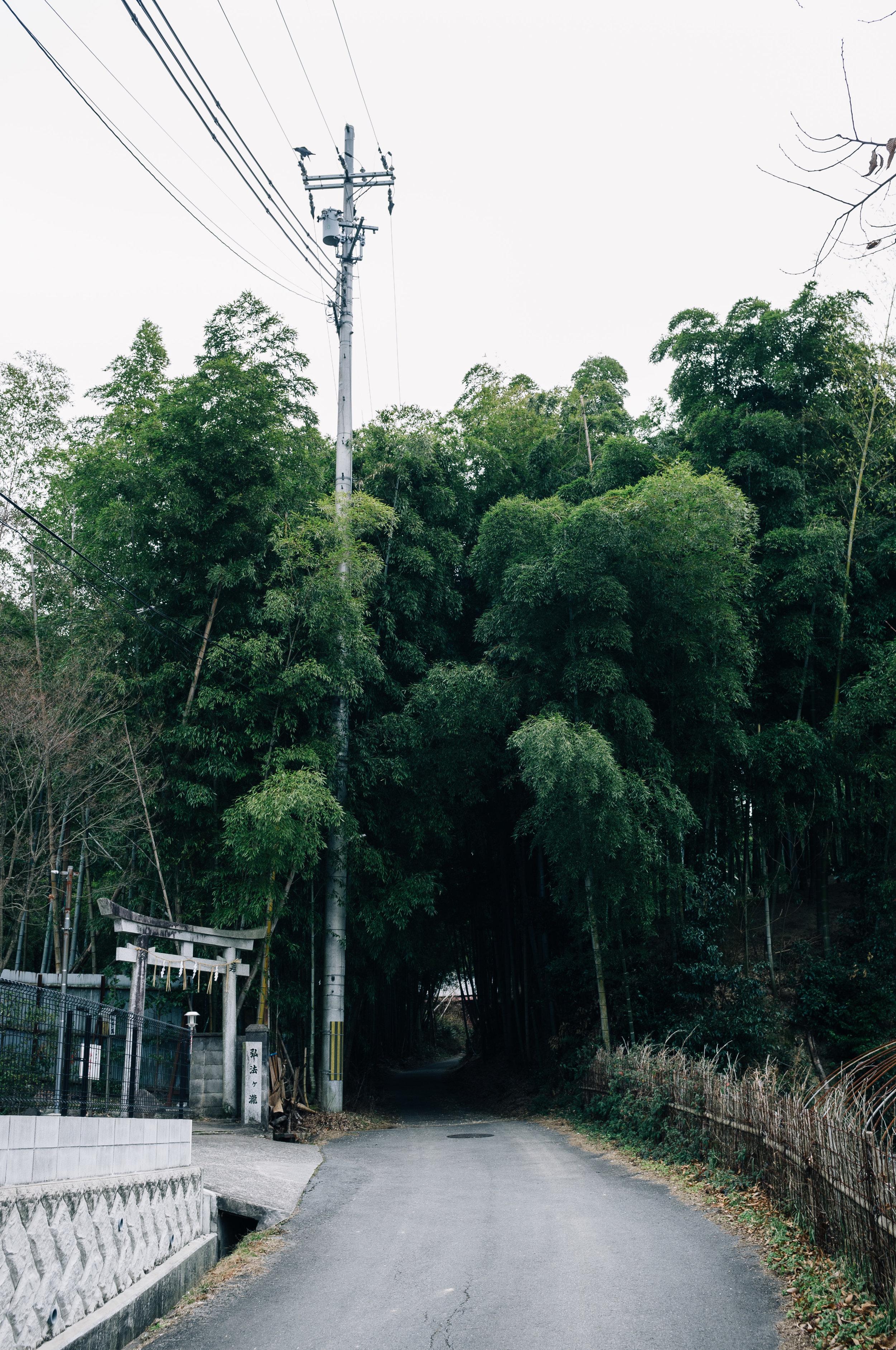 Inari 27.jpg