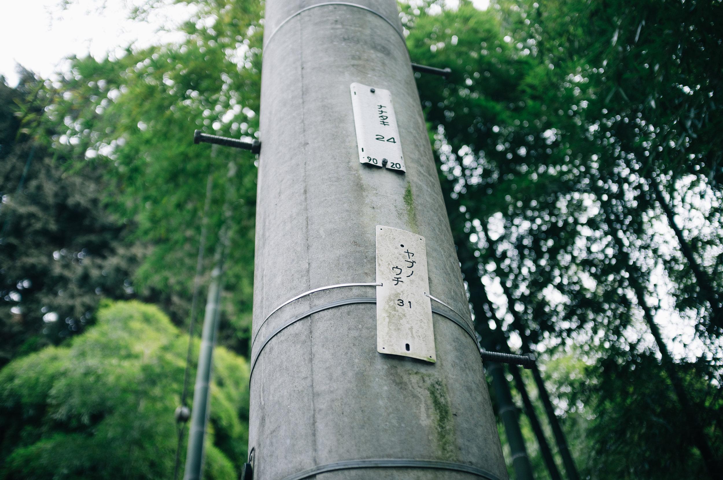 Inari 20.jpg