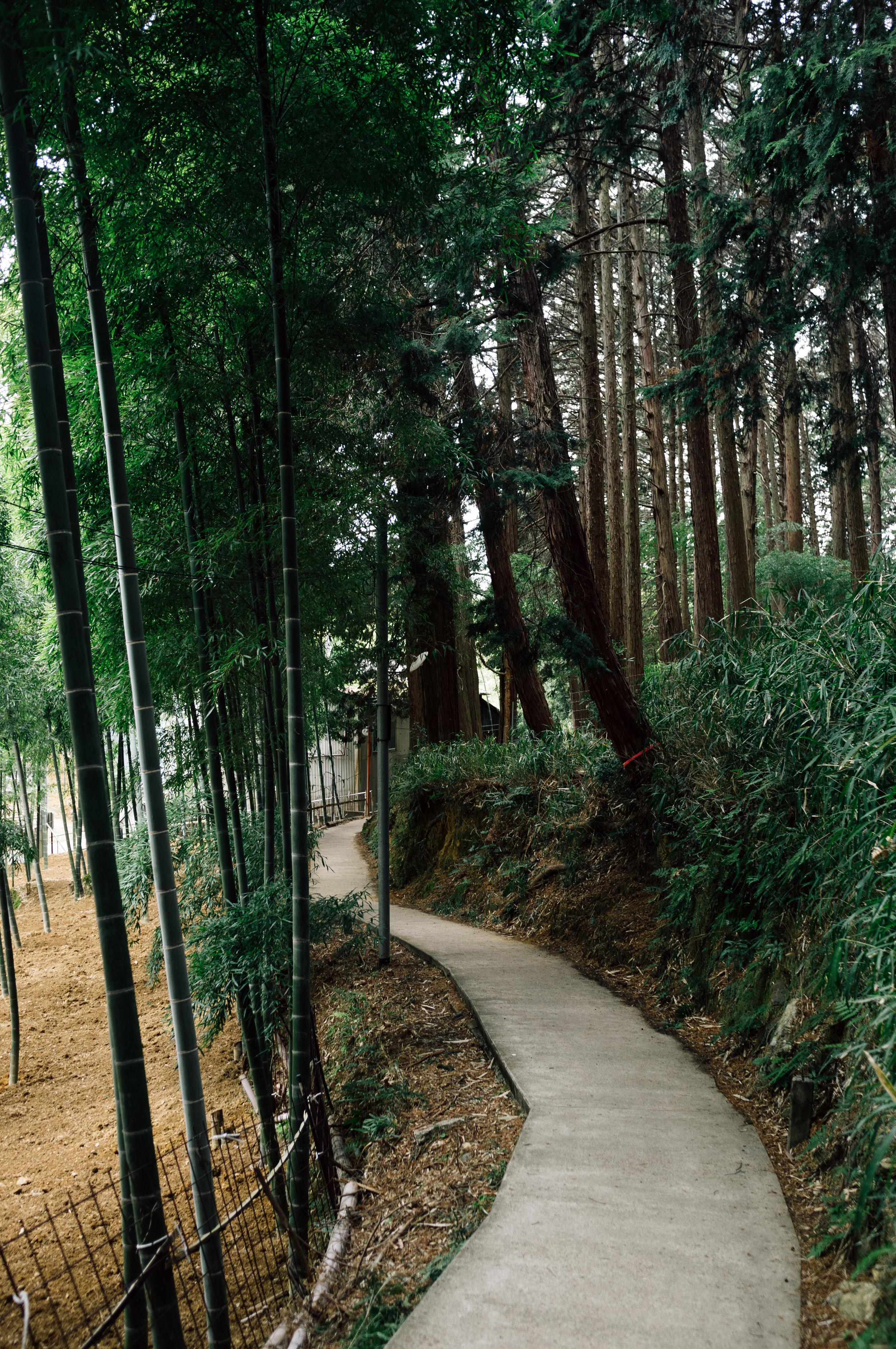 Inari 34.jpg