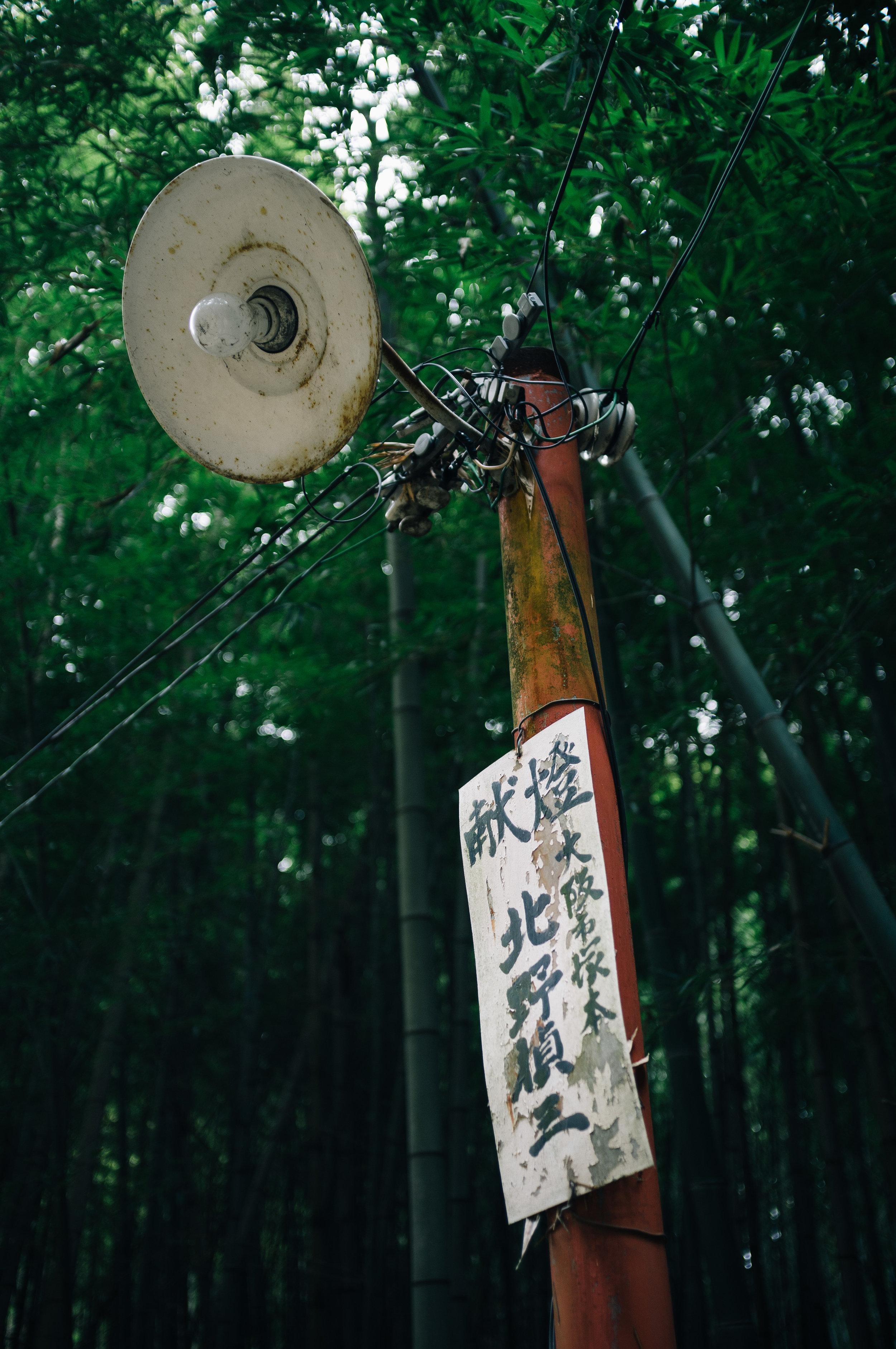 Inari 37.jpg