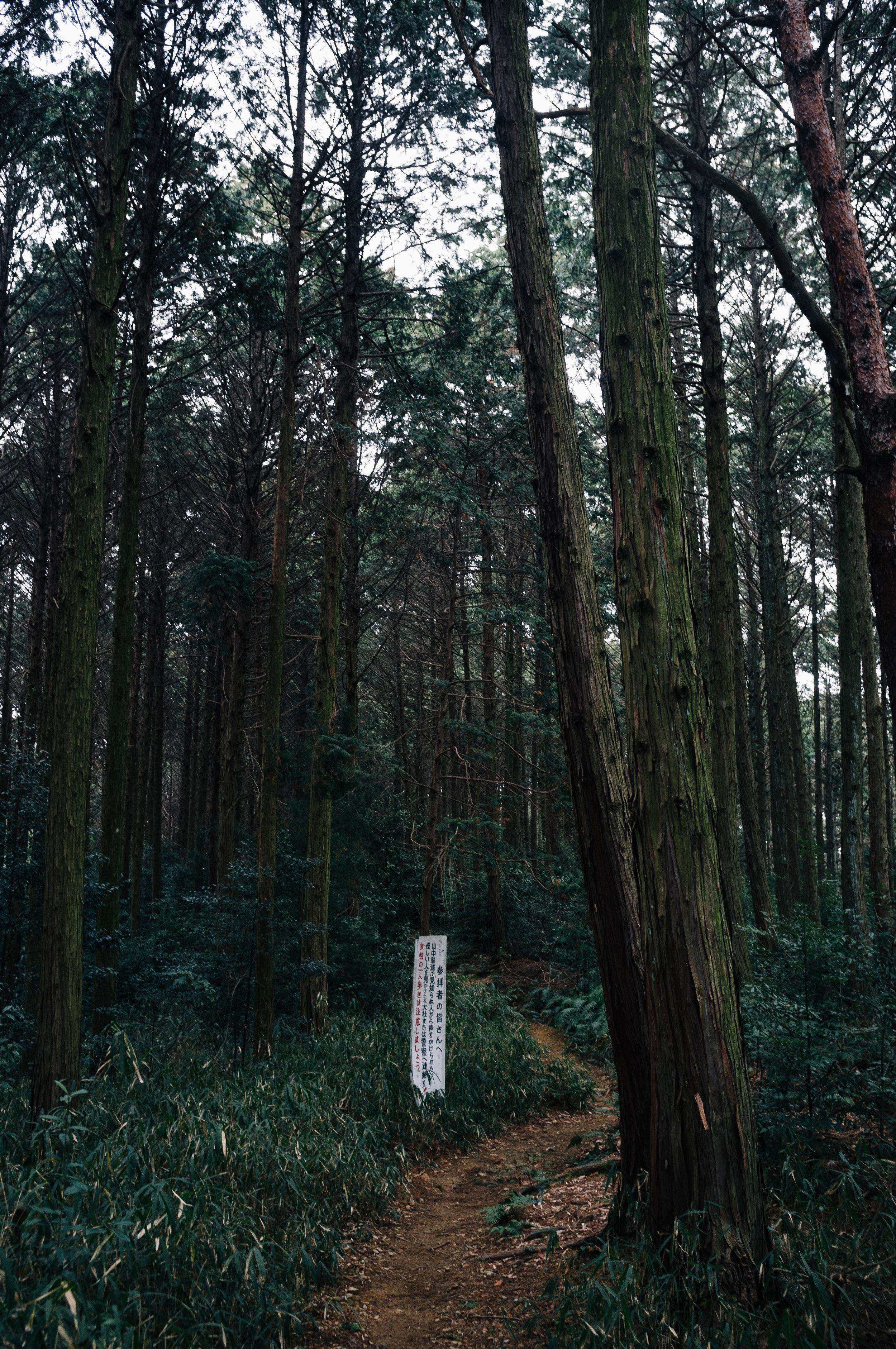 Inari 60.jpg