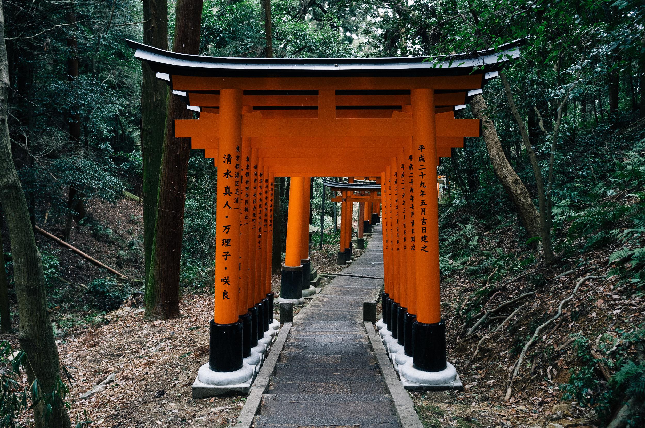 Inari 70.jpg