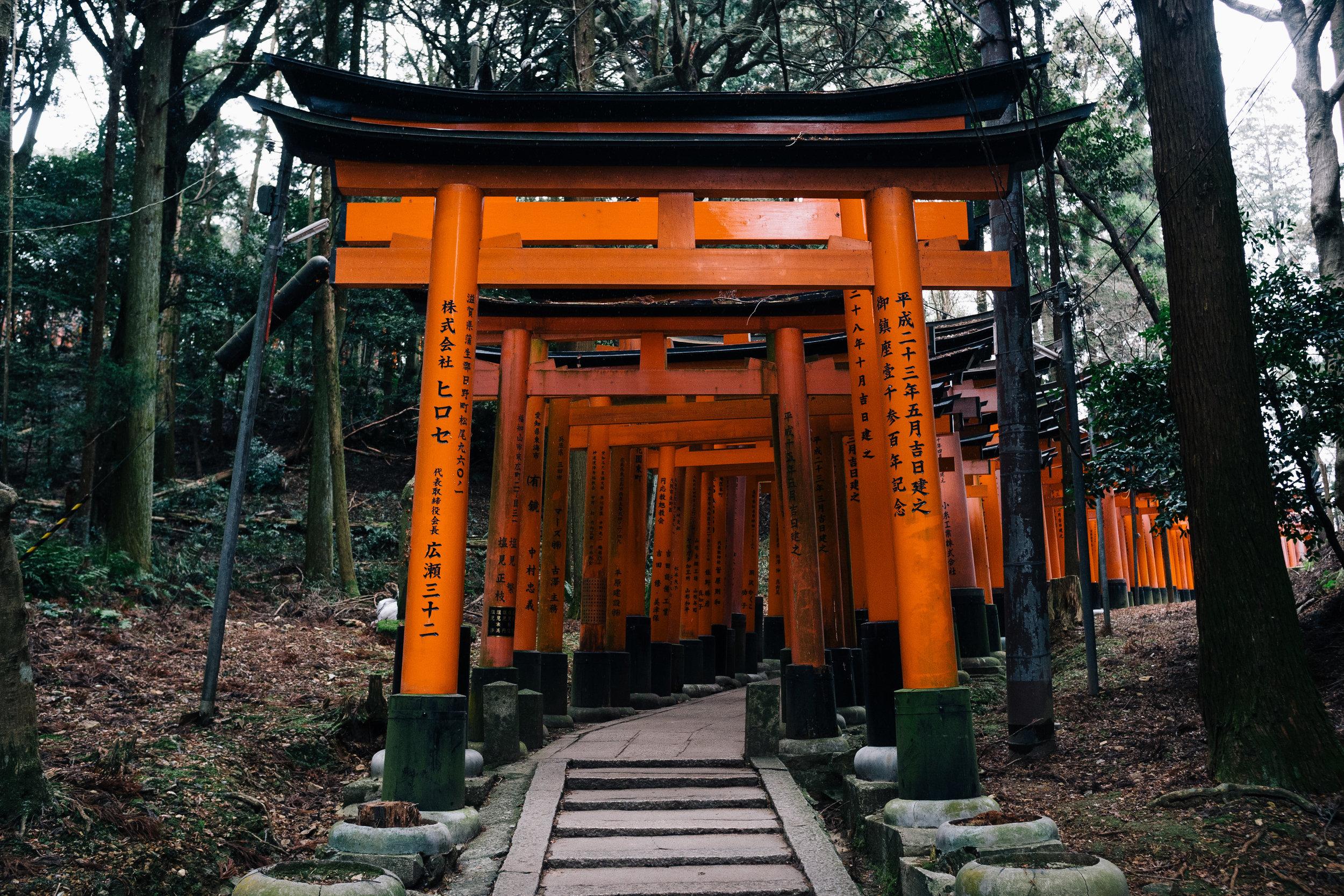 Inari 85.jpg