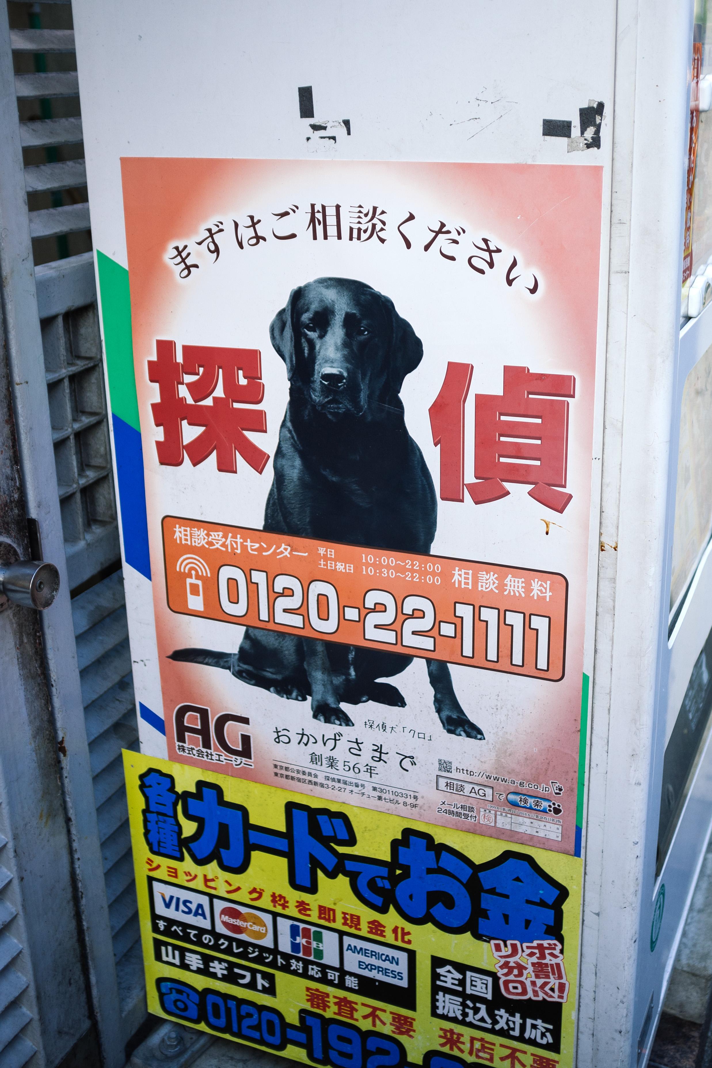 TokyoDogAd.jpg