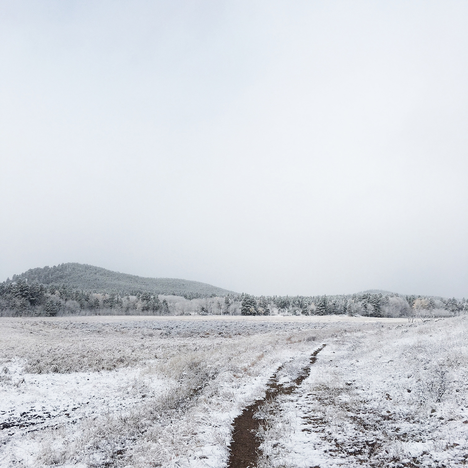 Boulder County Mountains Snow First iPhone 2018 2.jpg