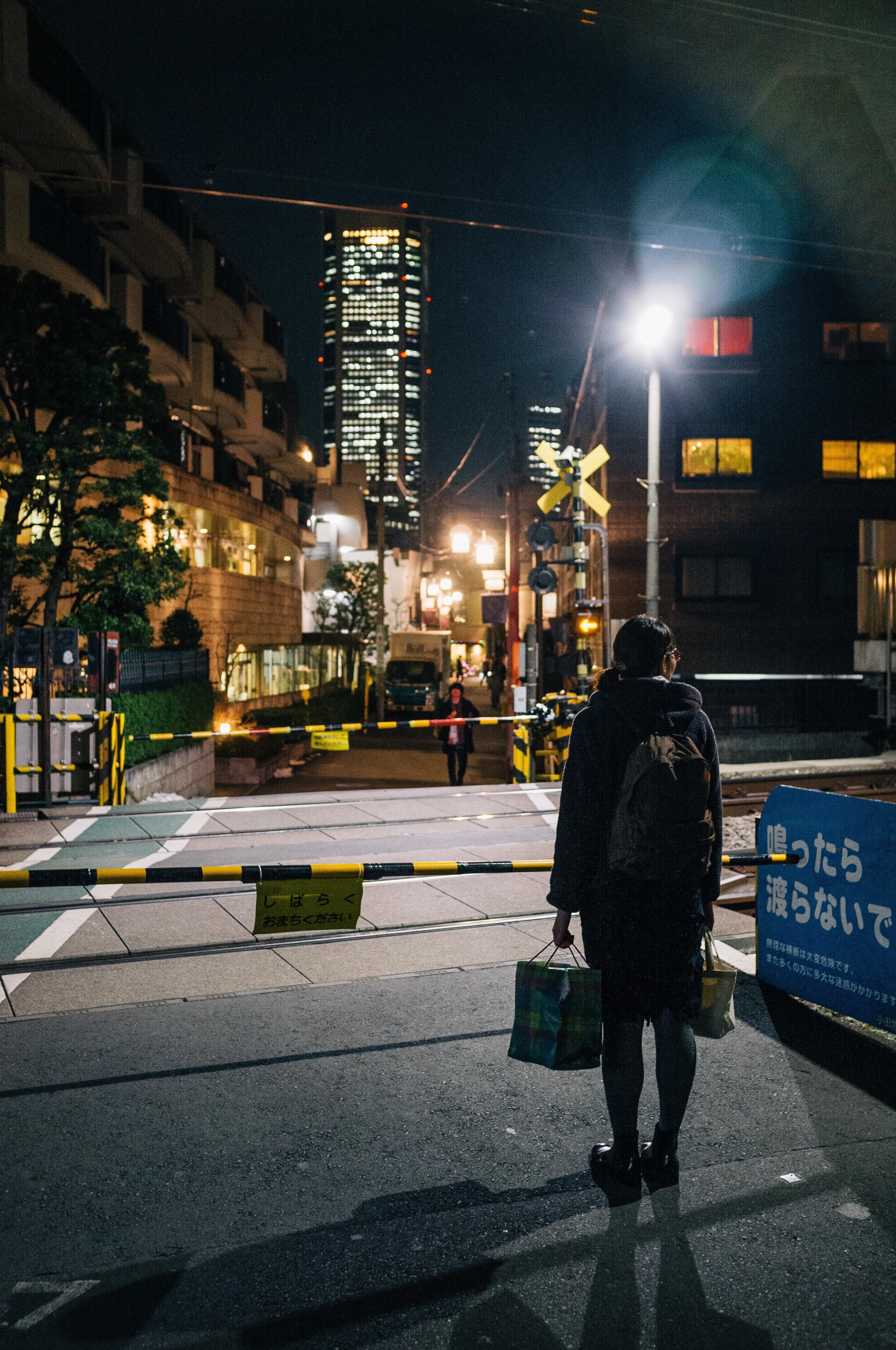 Tokyo Train Crossing 2.jpg