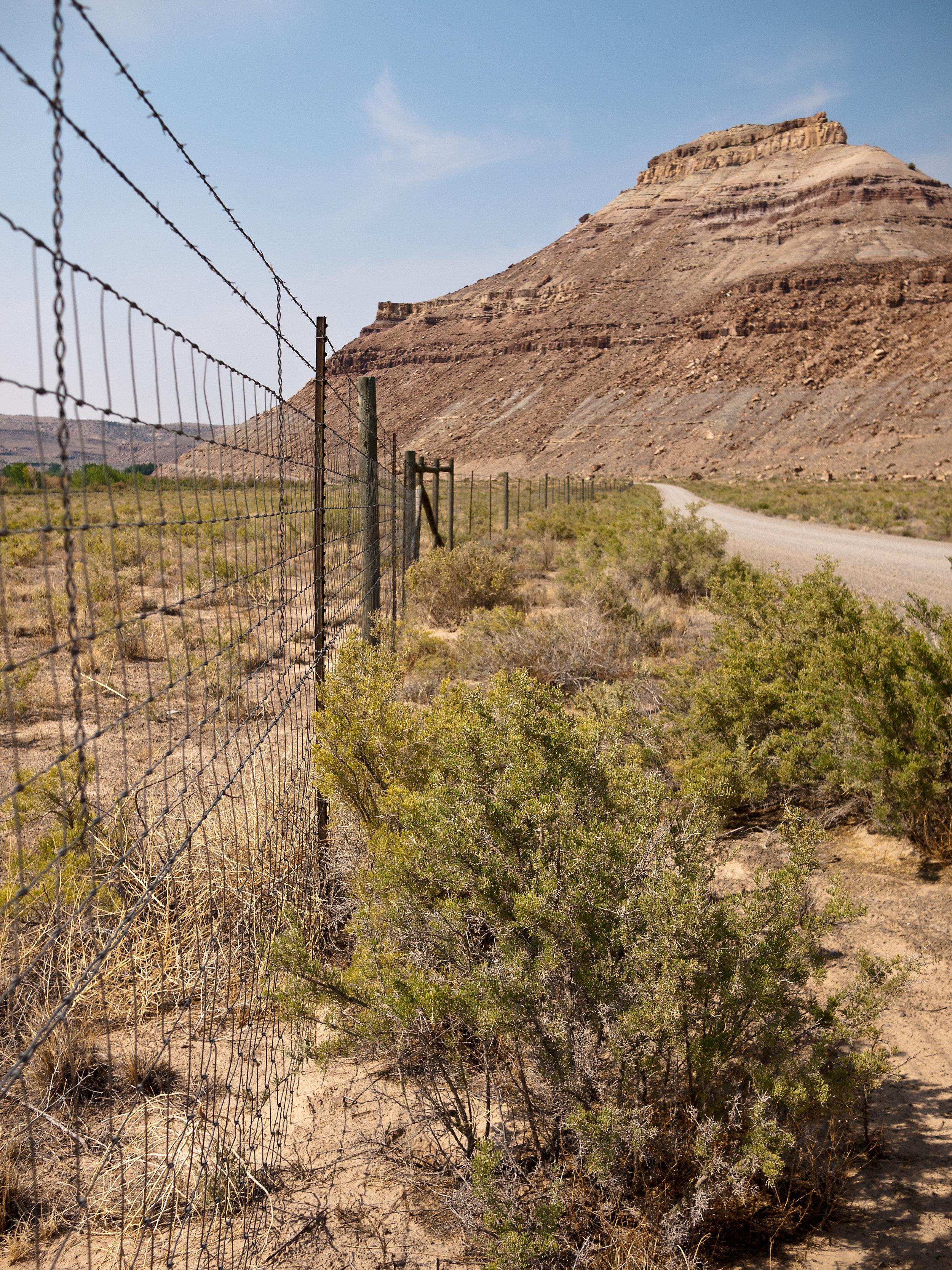 Shrub Fence 2.jpg