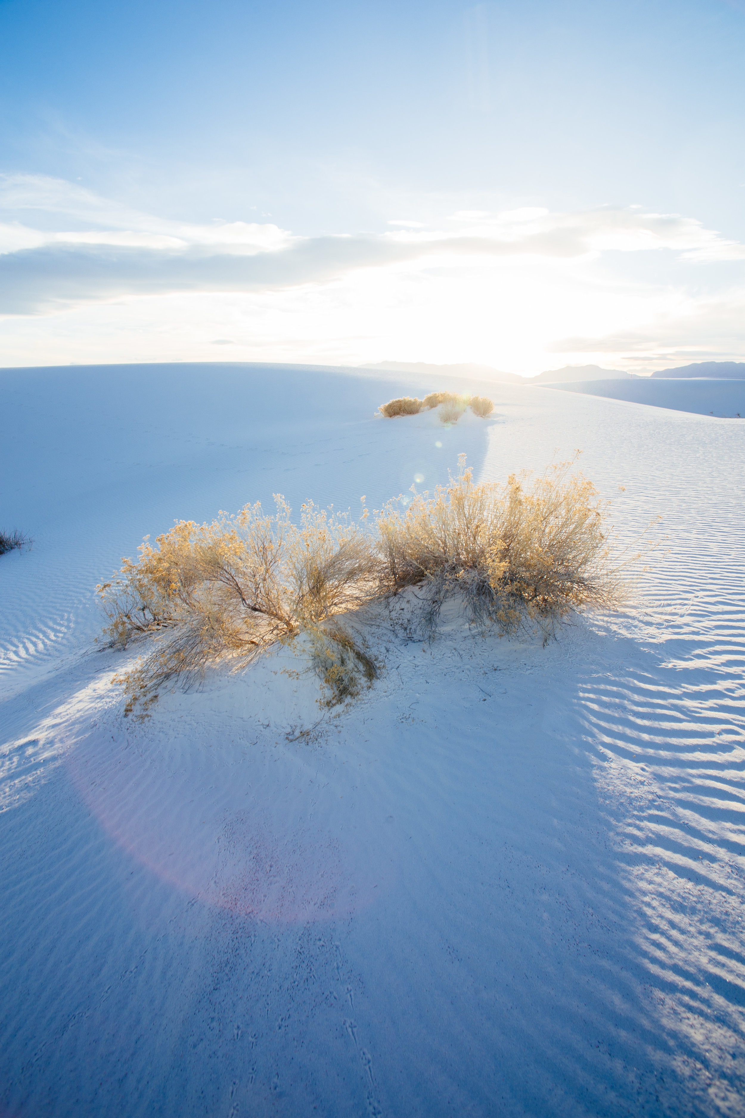 White Sands 15.jpg