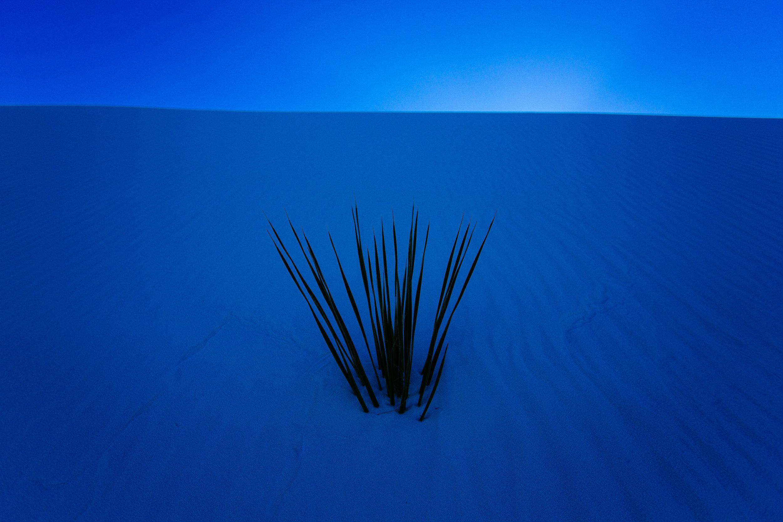 White Sands 2.jpg