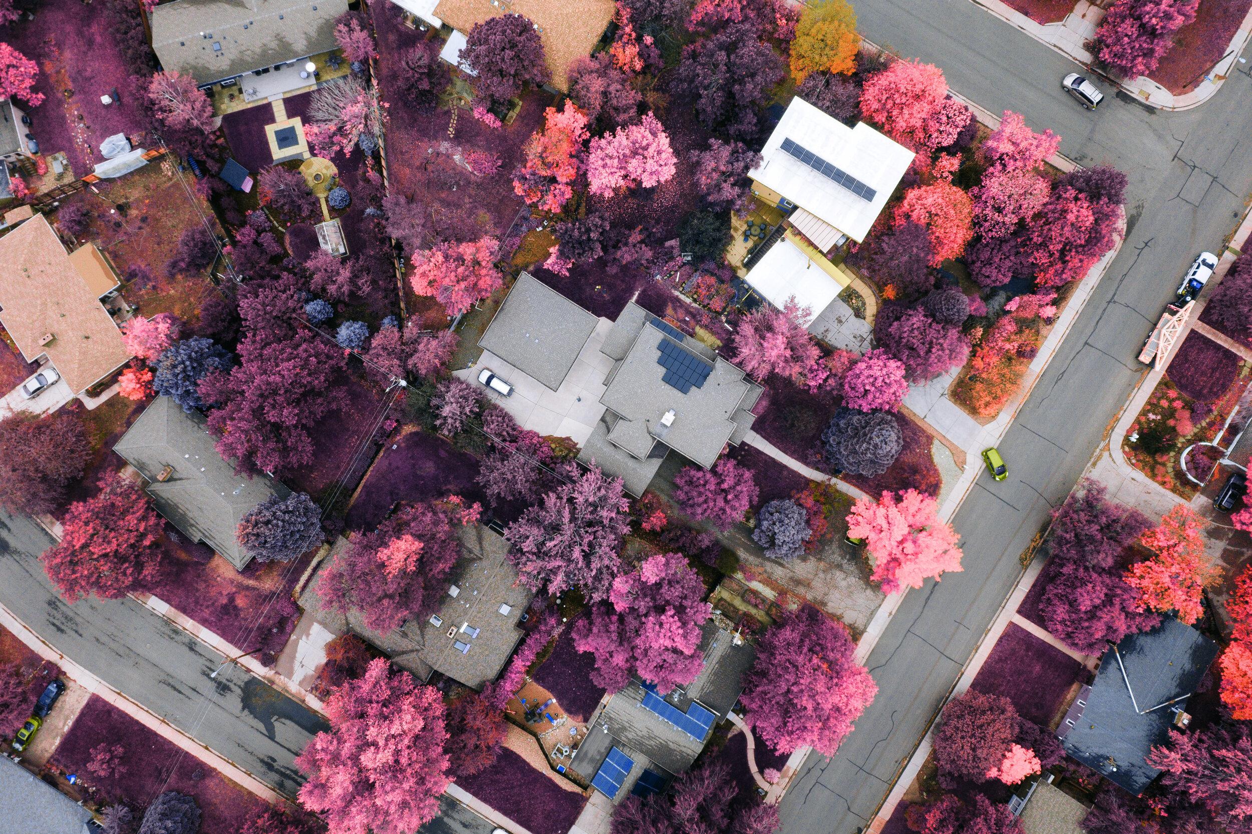 Home Aerial Topdown IR.jpg