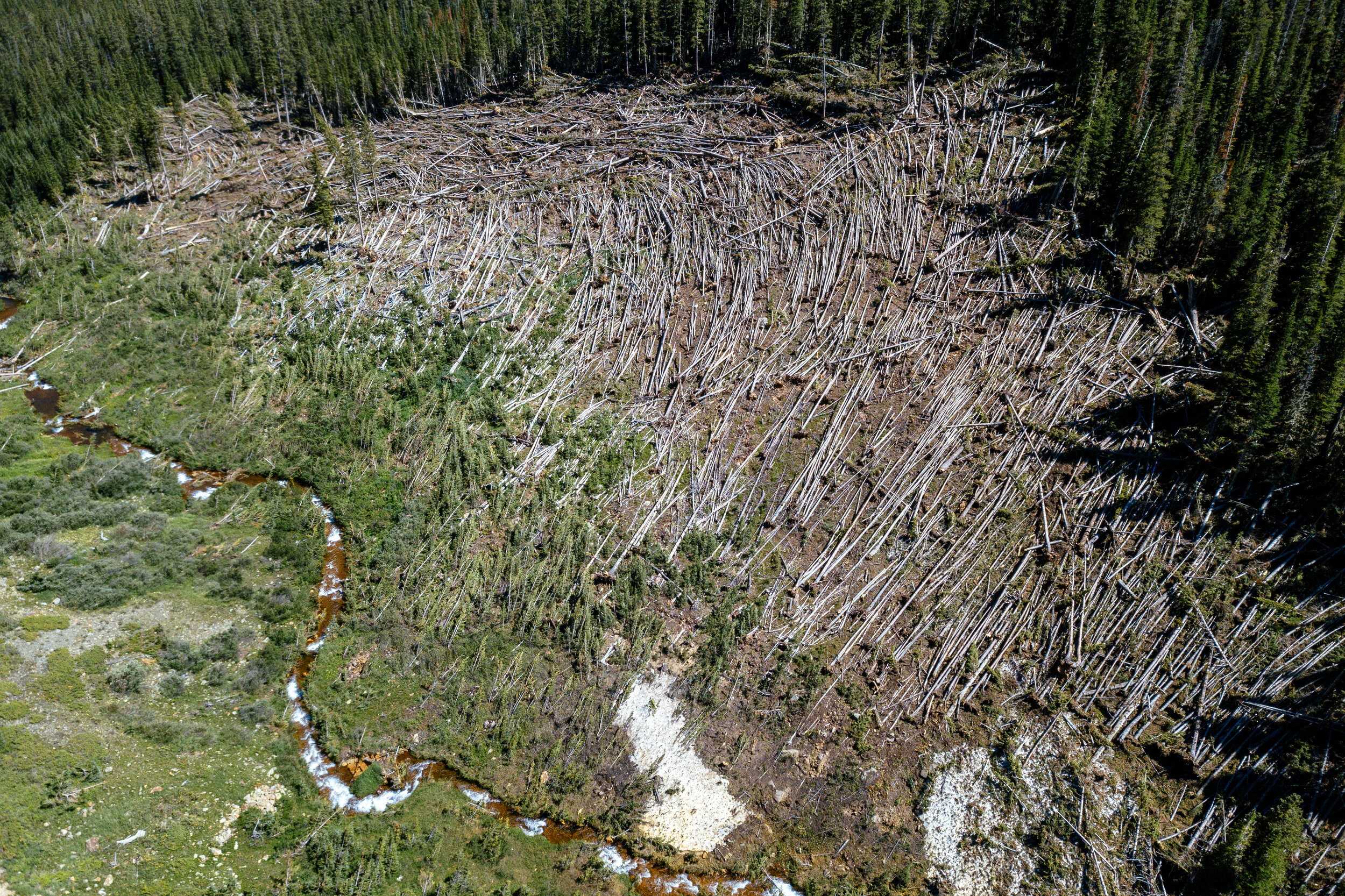 Geneva Creek Avalanche Basin Drone.jpg