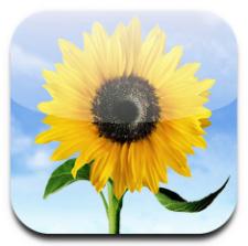 Apple_Photo_App_Icon-1.png