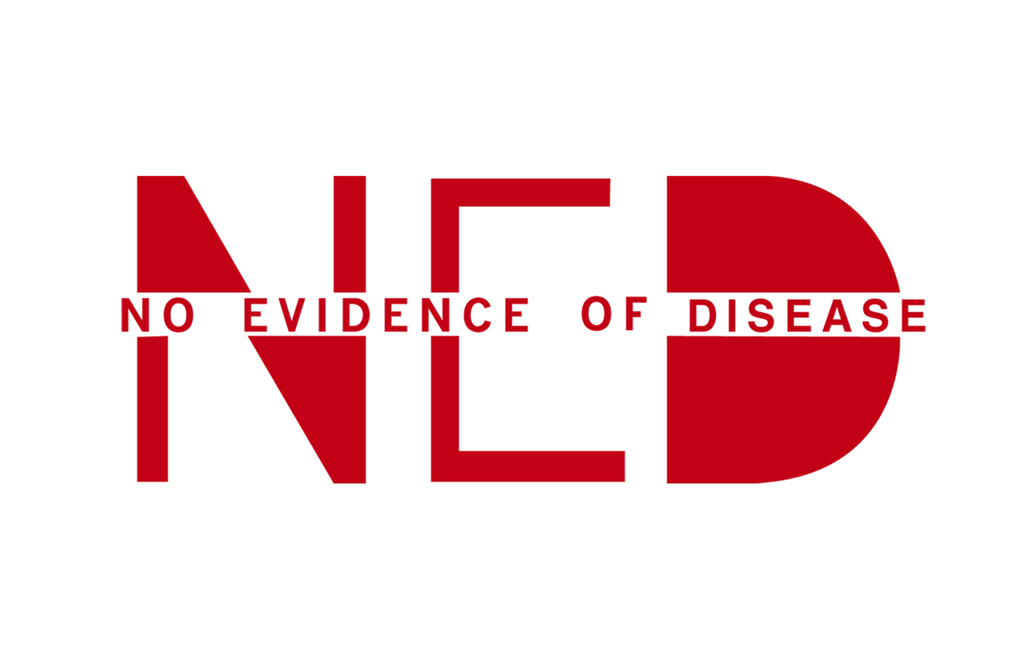 NED Logo Red copy.jpg
