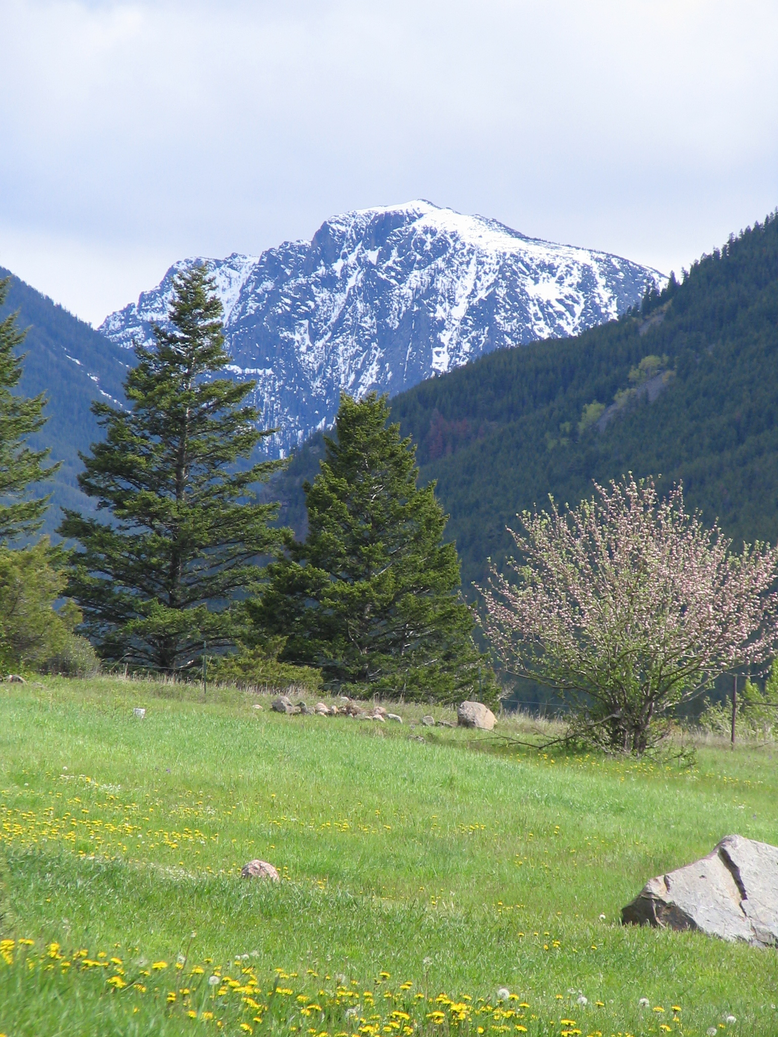 Camp Scenery 2005 051.JPG