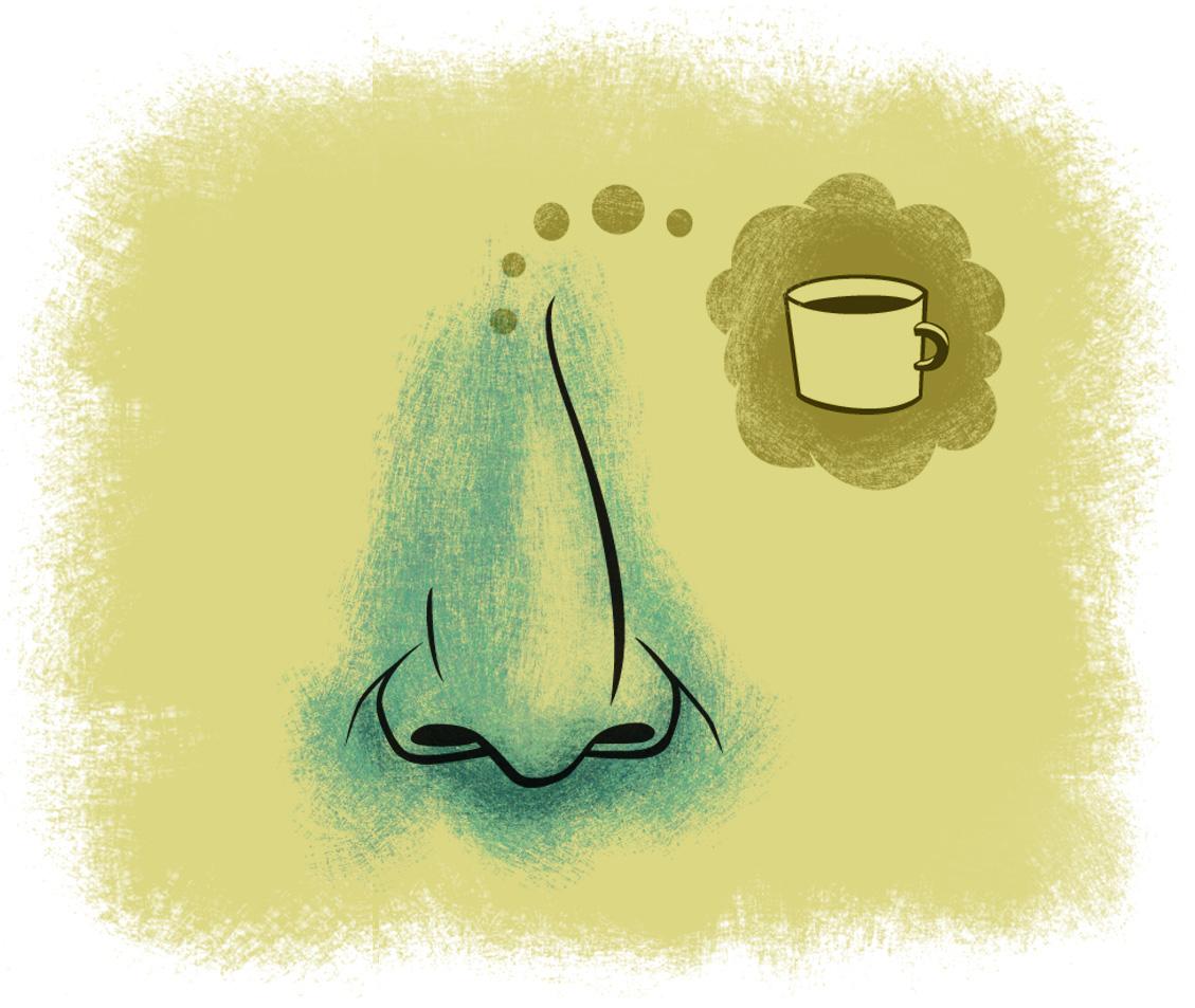 nose dreams copy.jpg