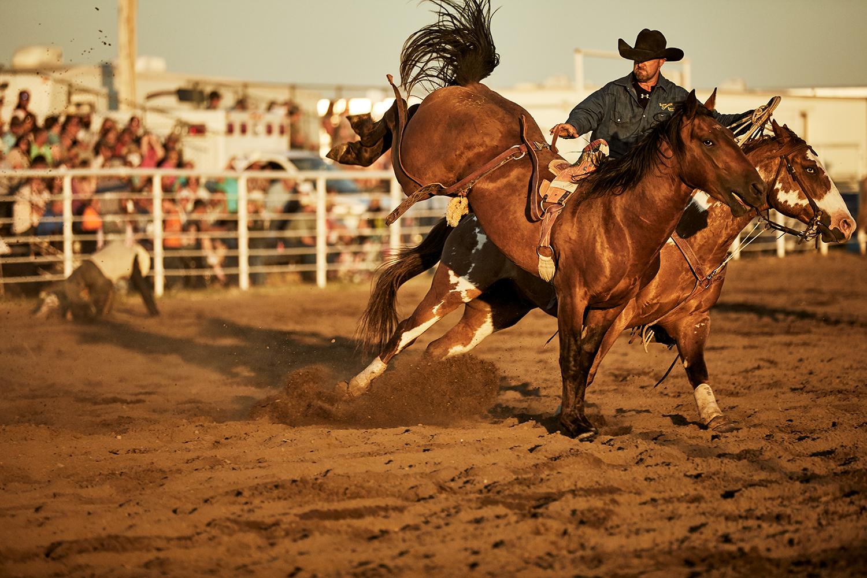 20170714_Burke_Rodeo_HP_5881.jpg
