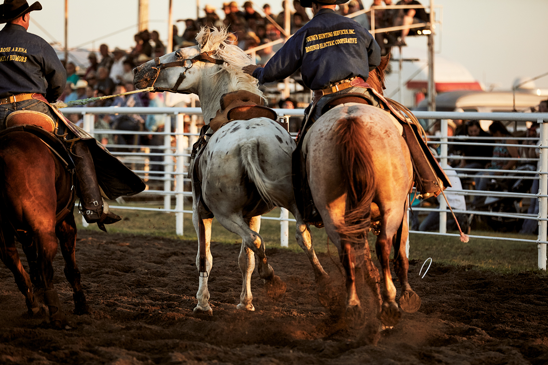 20170714_Burke_Rodeo_HP_6215.jpg