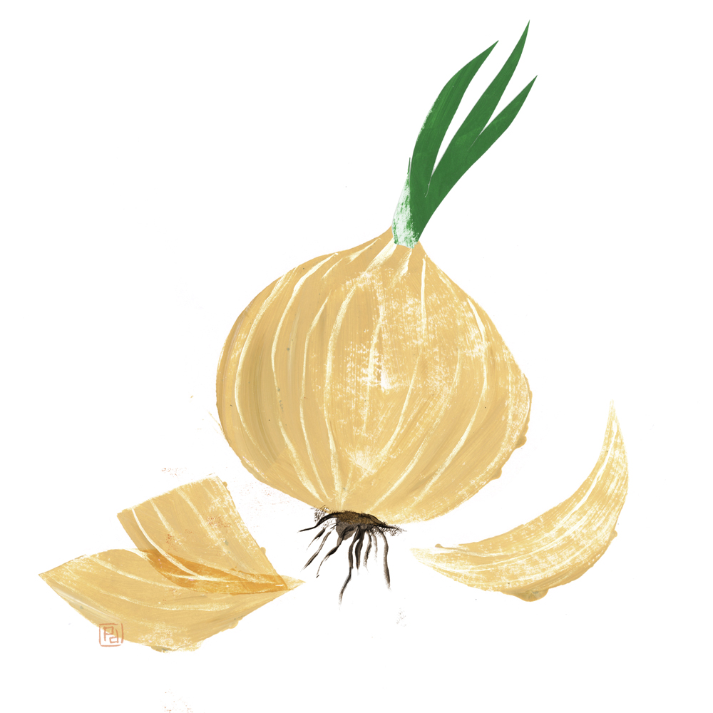 """Reading Neruda's """"Ode to the Onion"""" by Ellen Bass"""