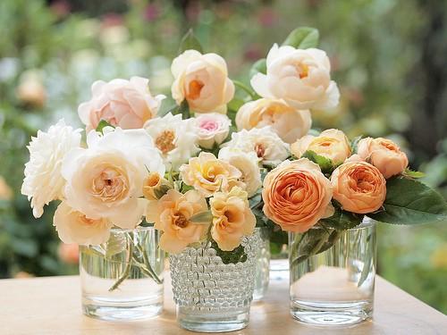 3 Copos vidros com flores.jpg