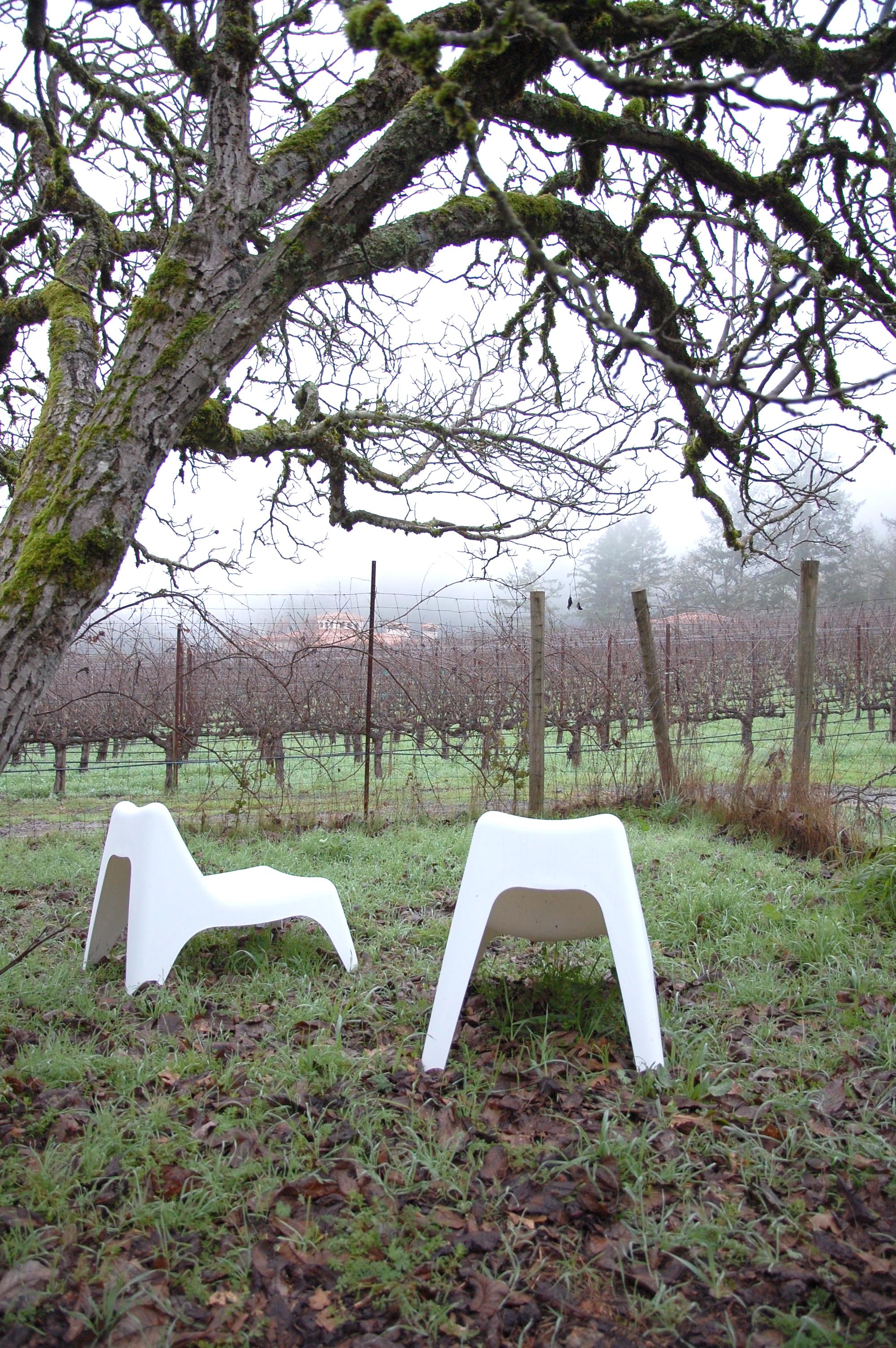 exterior garden winery.jpg