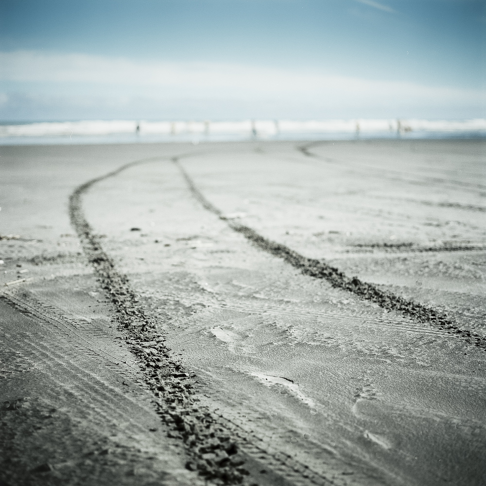 beach-sand-tracks-Wellington-photo-Paul-Fisher.jpg