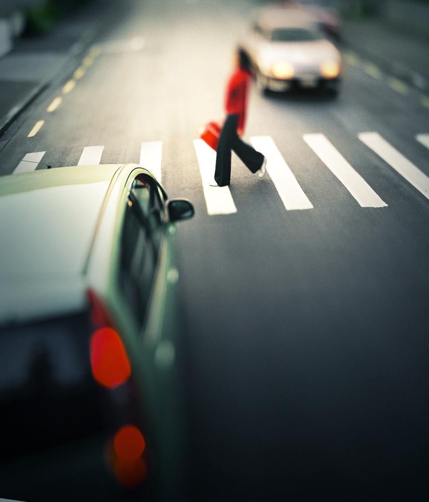 Pedestrian-crossing-Wellington-photographer-Paul-Fisher.jpg