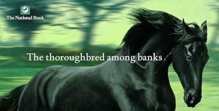 National-Bank-Horse-PaulFisher-blog-003-2