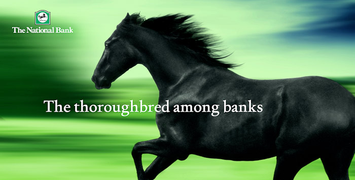 National-Bank-Horse-PaulFisher-blog-004