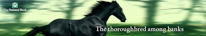 National-Bank-Horse-PaulFisher-blog-005
