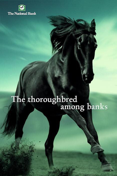 National-Bank-Horse-PaulFisher-blog-.jpg