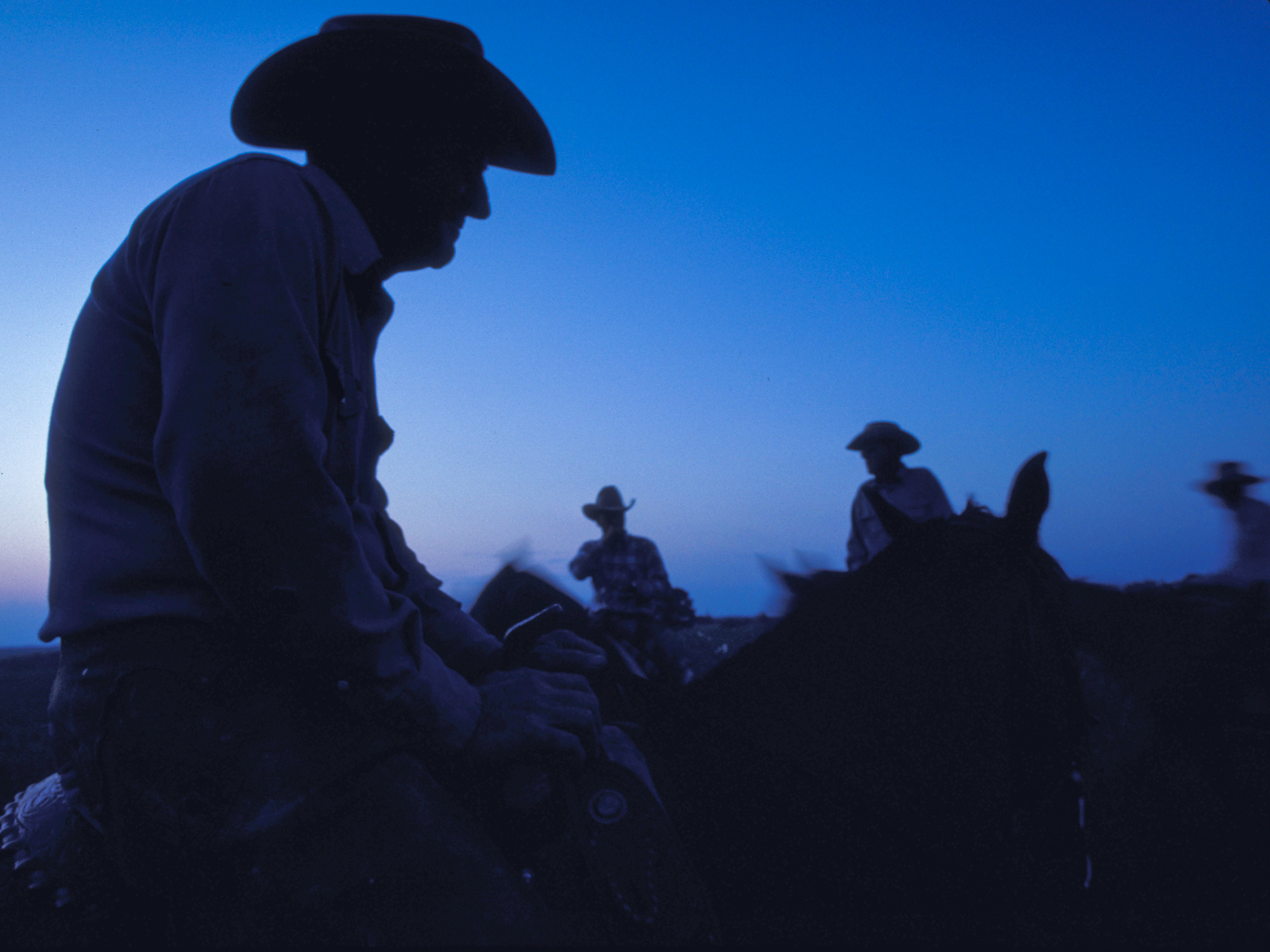 Cowboys saddle-up for the cattle round-up Copyright © Kipp Baker, All rights reserved